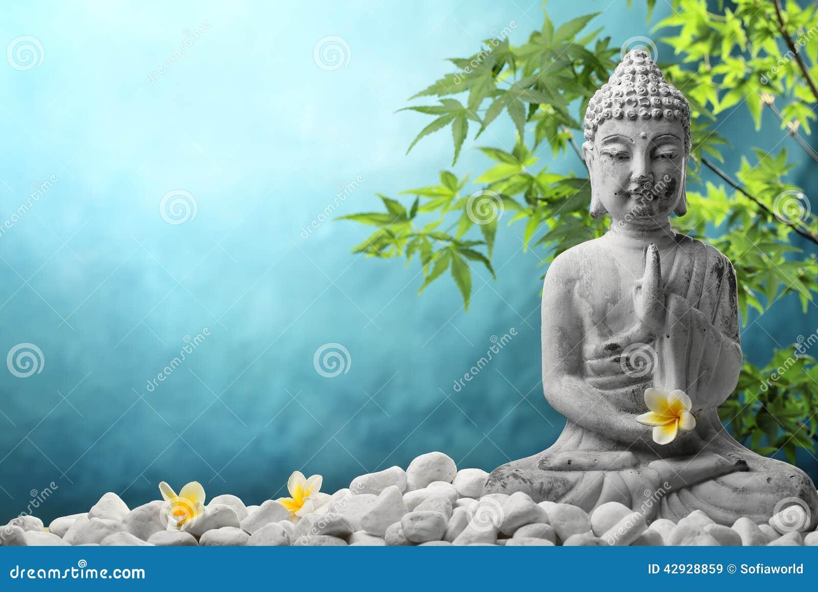 Buddha In Meditation Stock Photo Image 42928859