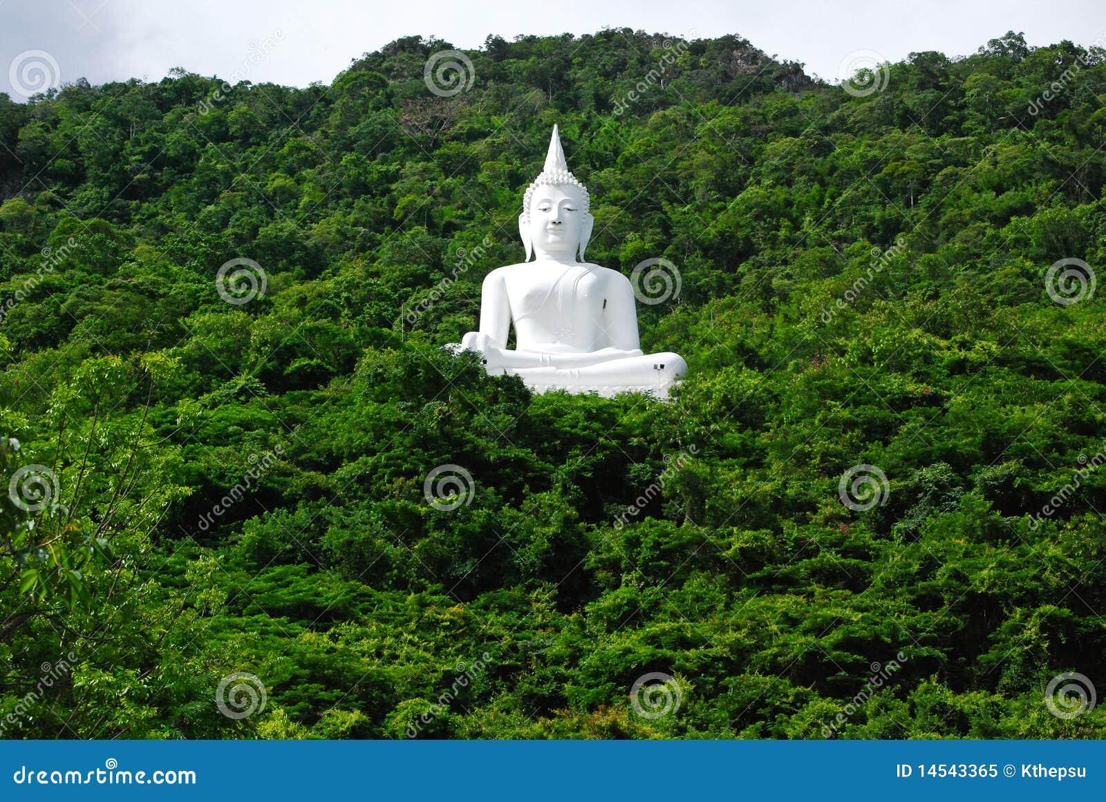 Buddha Mountain - Wikipedia