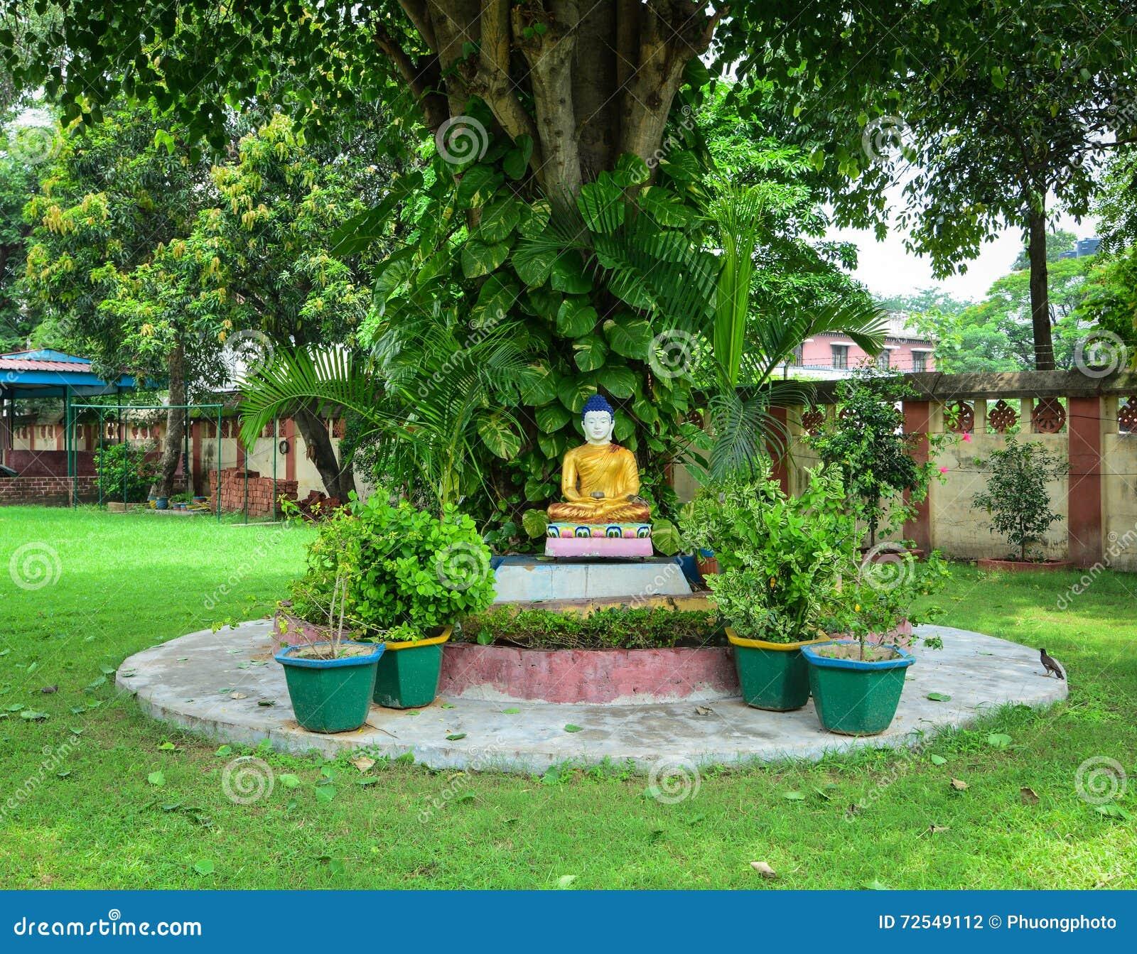 buddha statue garden bodhgaya india stock photos - 17 images