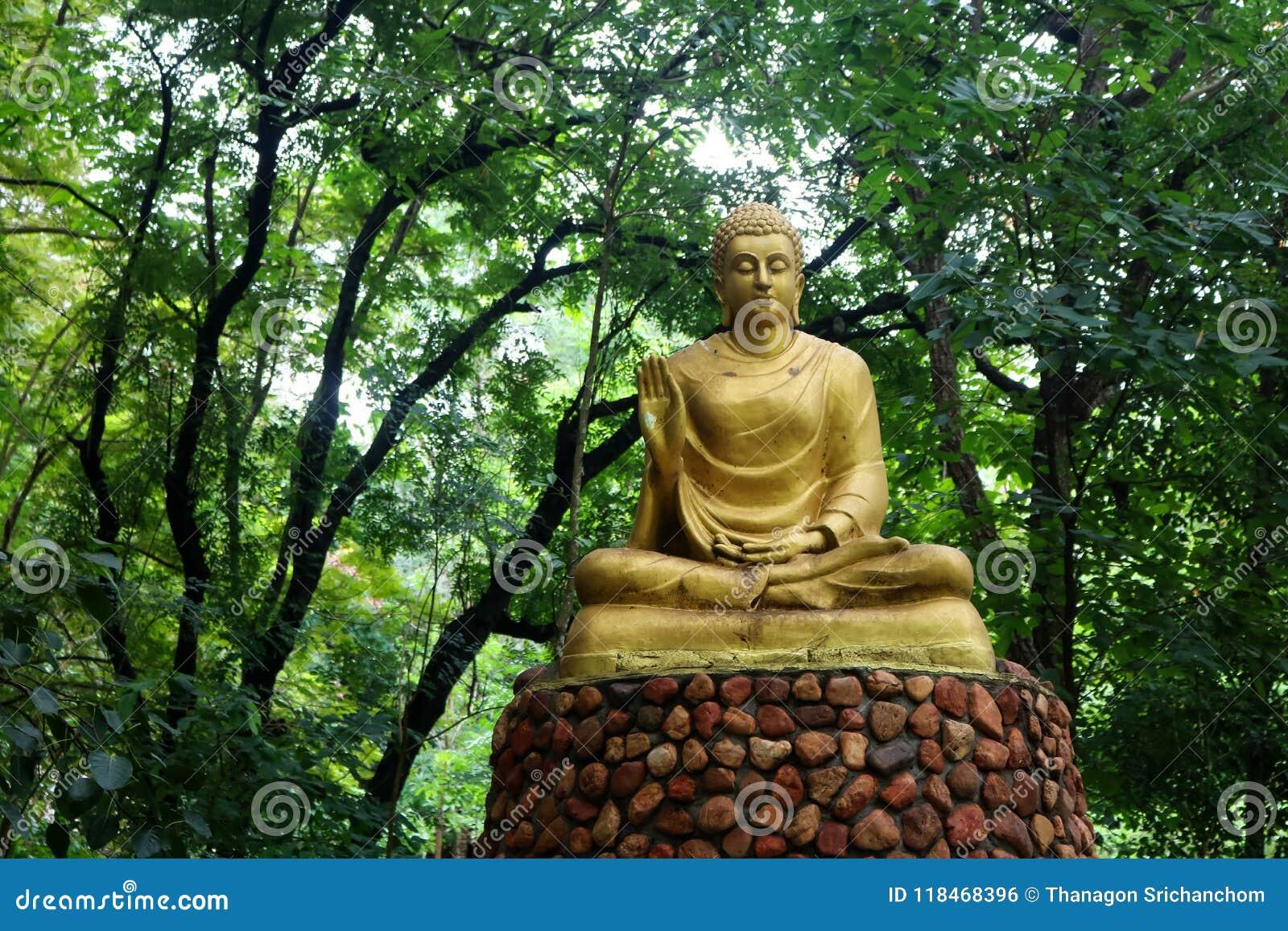Buddha Statue Im Grunen Waldhintergrund Stockfoto Bild Von Gold