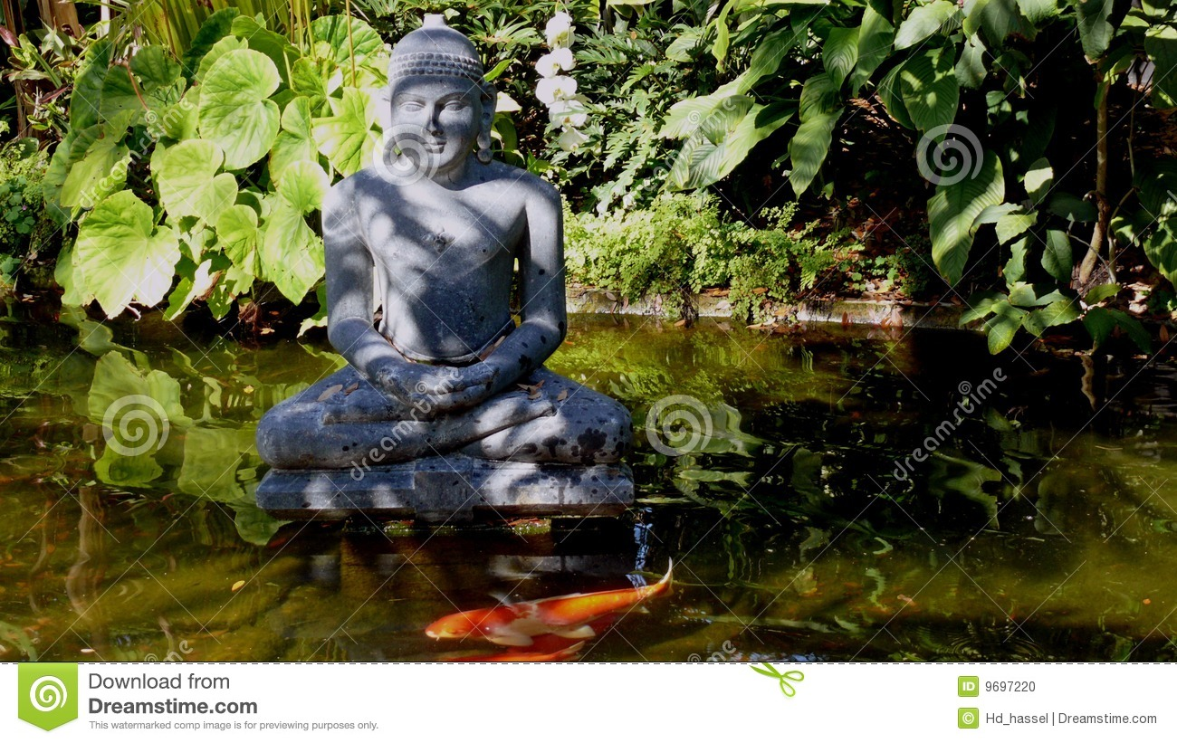 Buddha statue and pond stock photo image of outdoors for Statue carpe koi