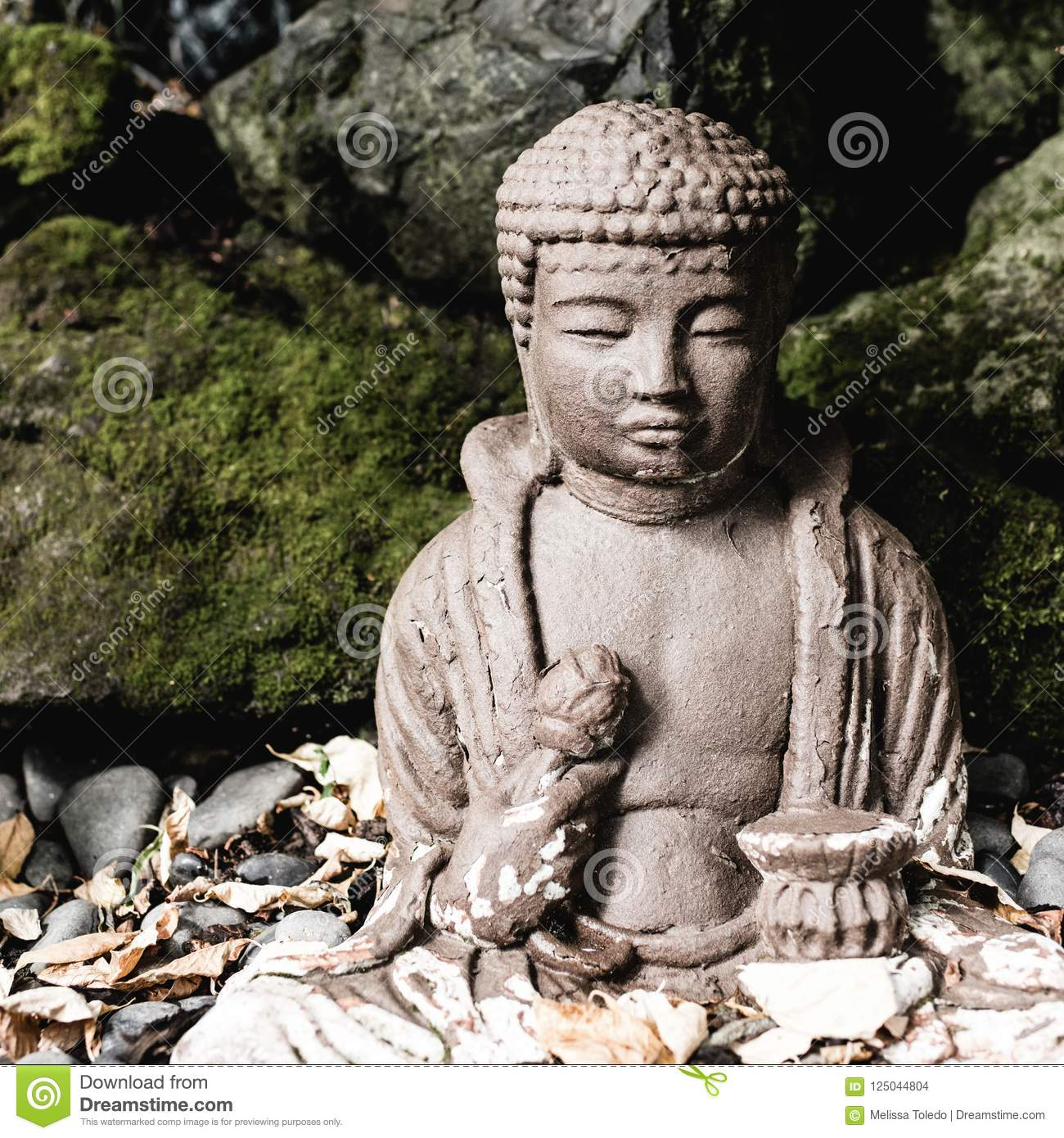 Download Buddha Statue In A Garden. Stock Photo. Image Of Oriental    125044804