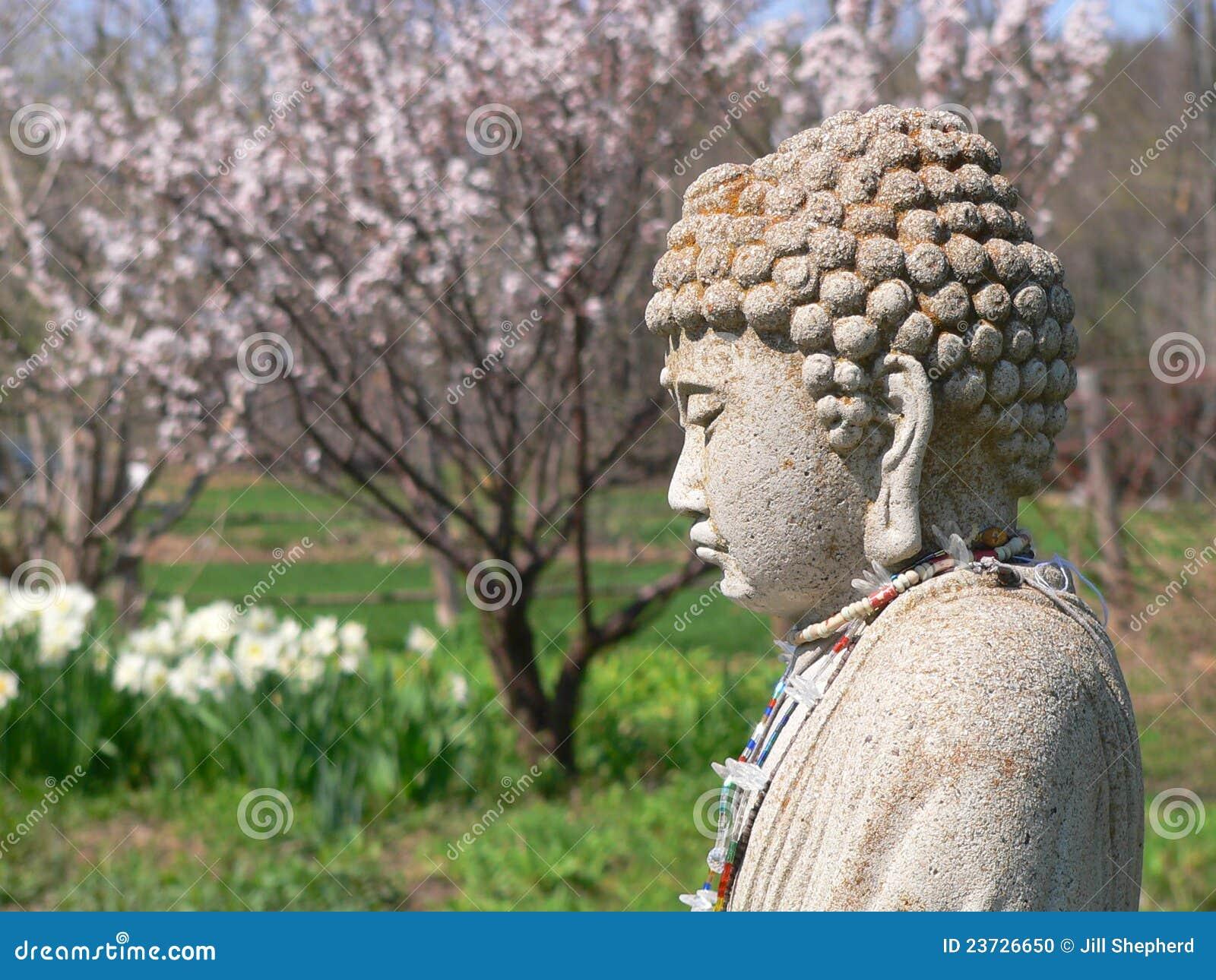Buddha trädgårds- fjäder