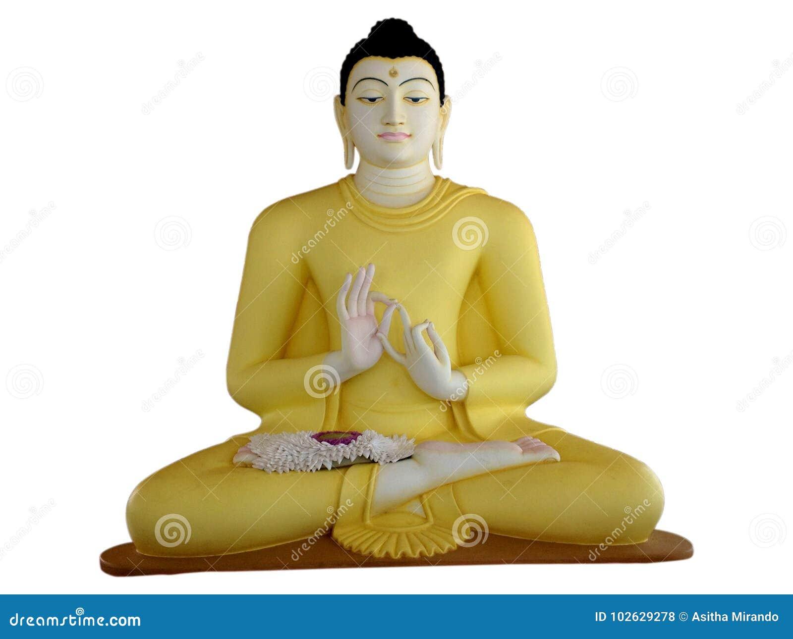 Buddha władyki statua