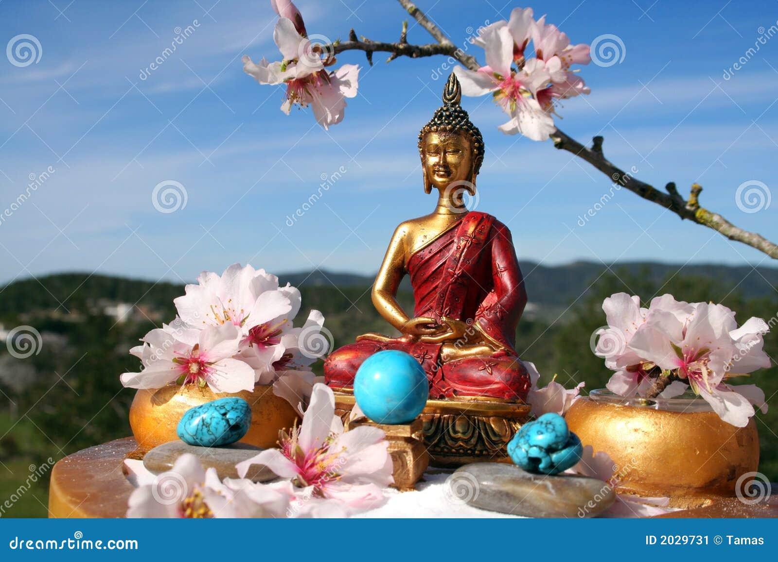 Wonderful Buddha Zen Garden Meditation Stock Image