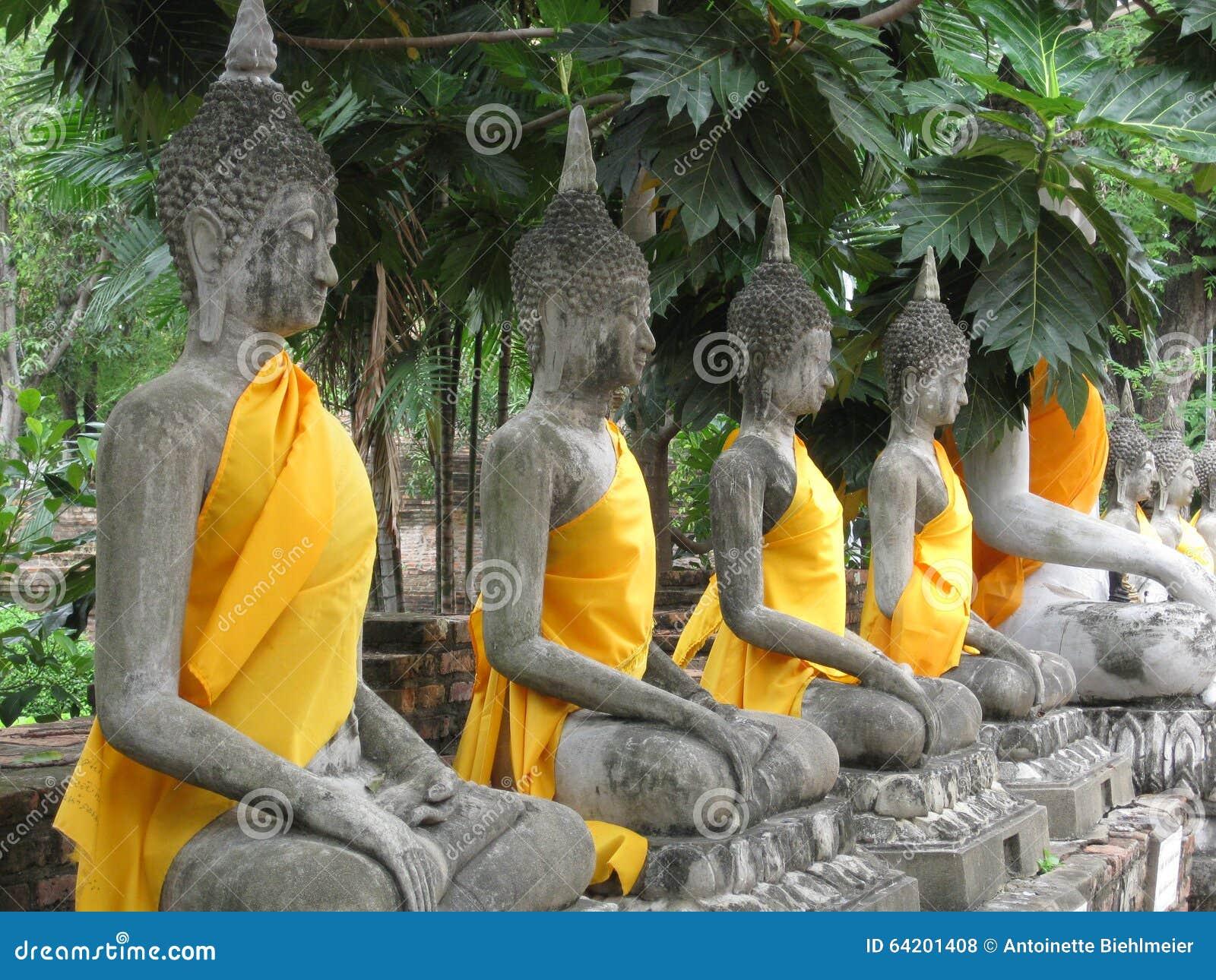 Buddhas en línea
