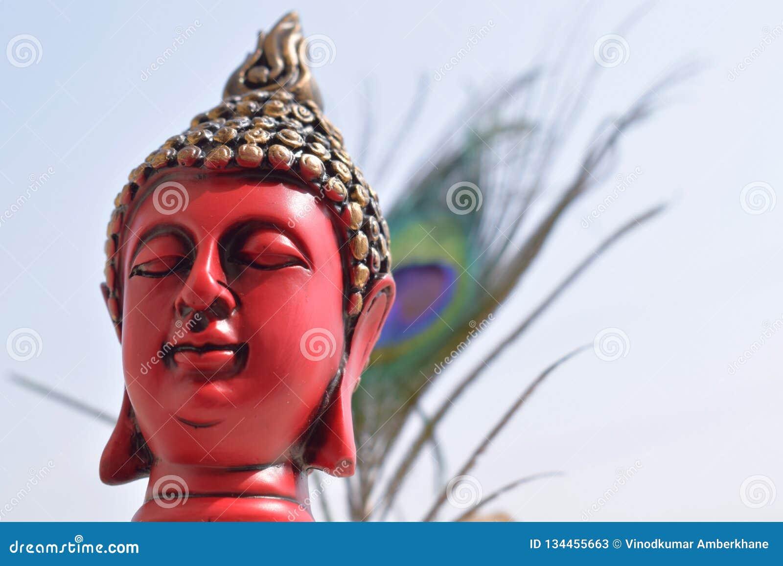 Buddhastaty med påfågelfjäderbakgrund