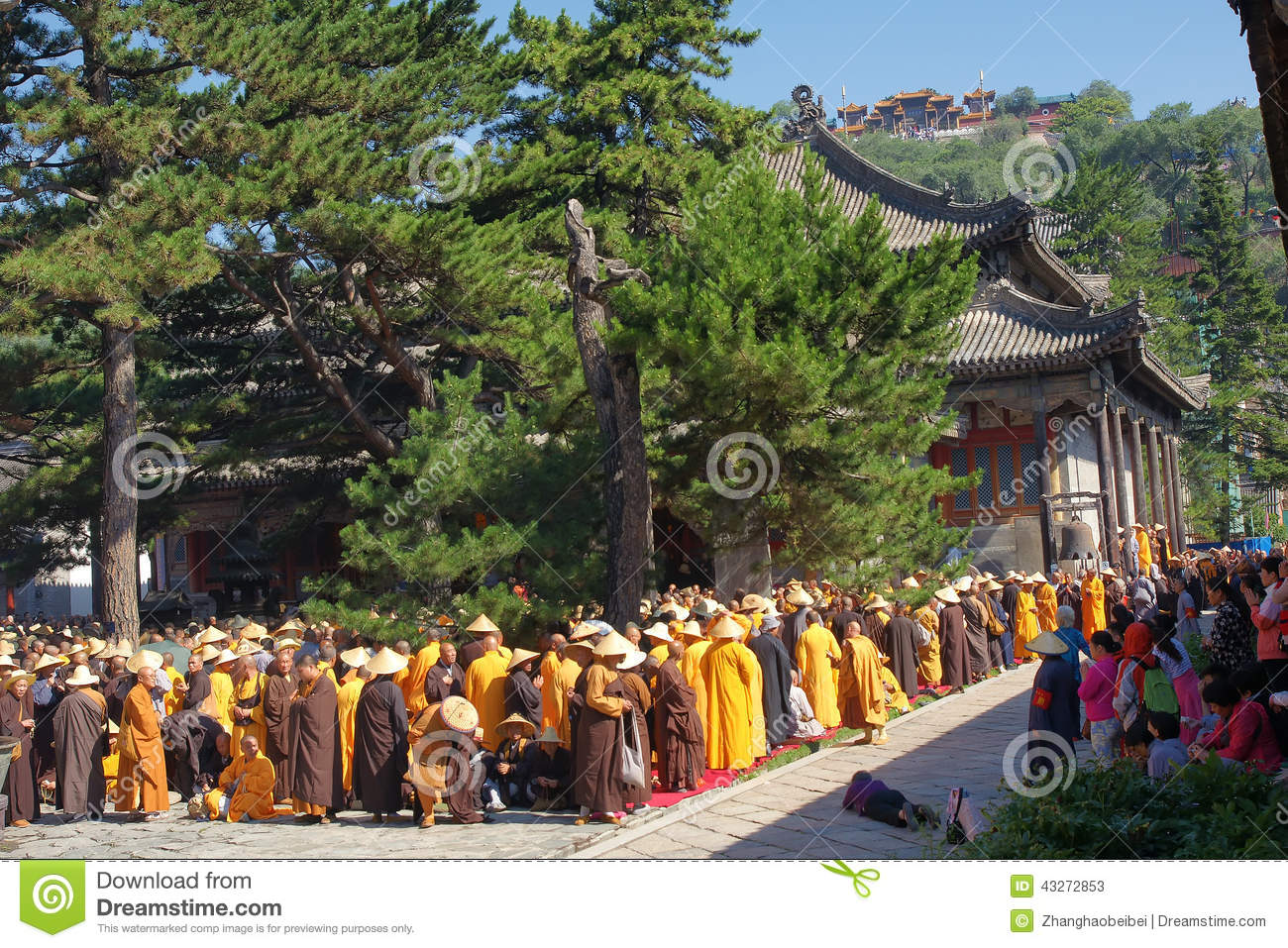buddhist single women in mount tremper Vacations for the soul by michael the buddhists in mount tremper where three women, one with a baby.