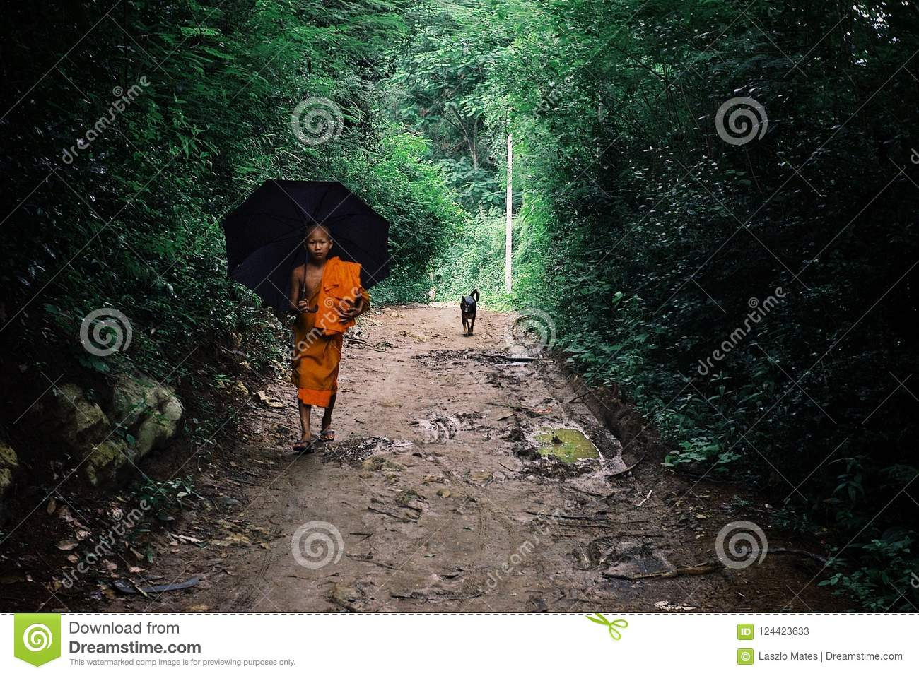 buddhist monk walking home with an umbrella