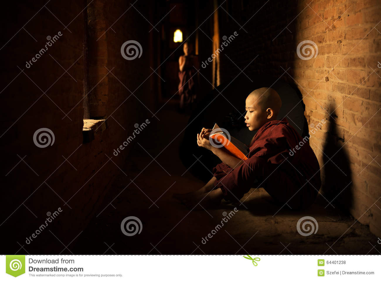 Buddhist novice reading