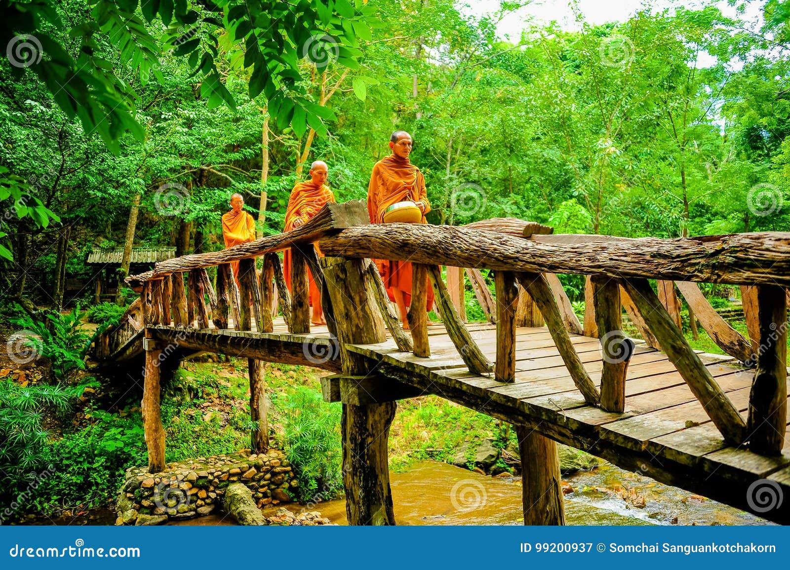 Buddistmonniken die aalmoes in ochtend marcheren te zoeken