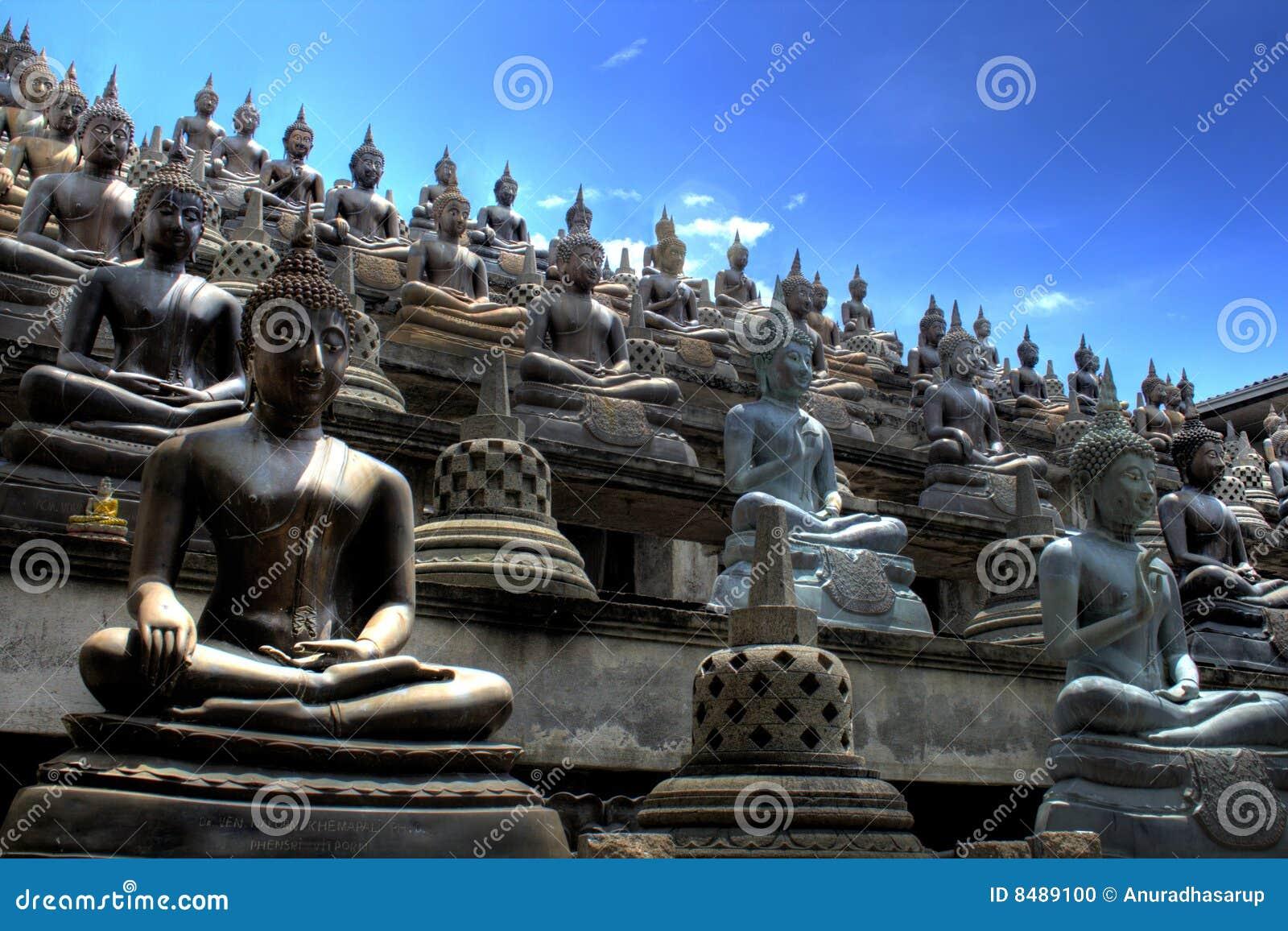 Buddyjska lanka sri świątynia