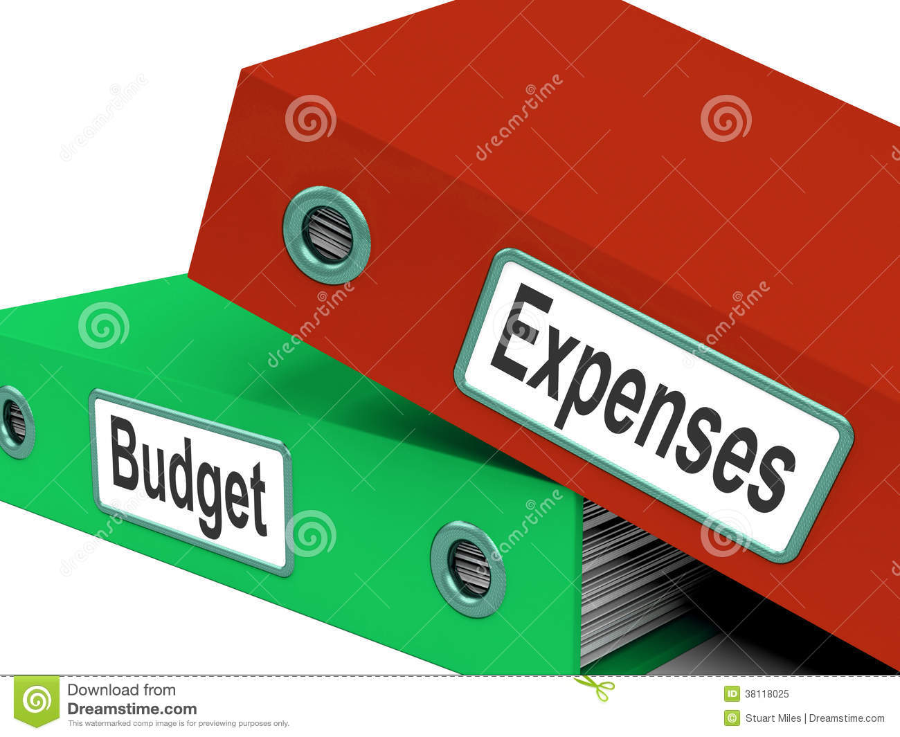 Budget Expenses Folders Mean Business Finances And