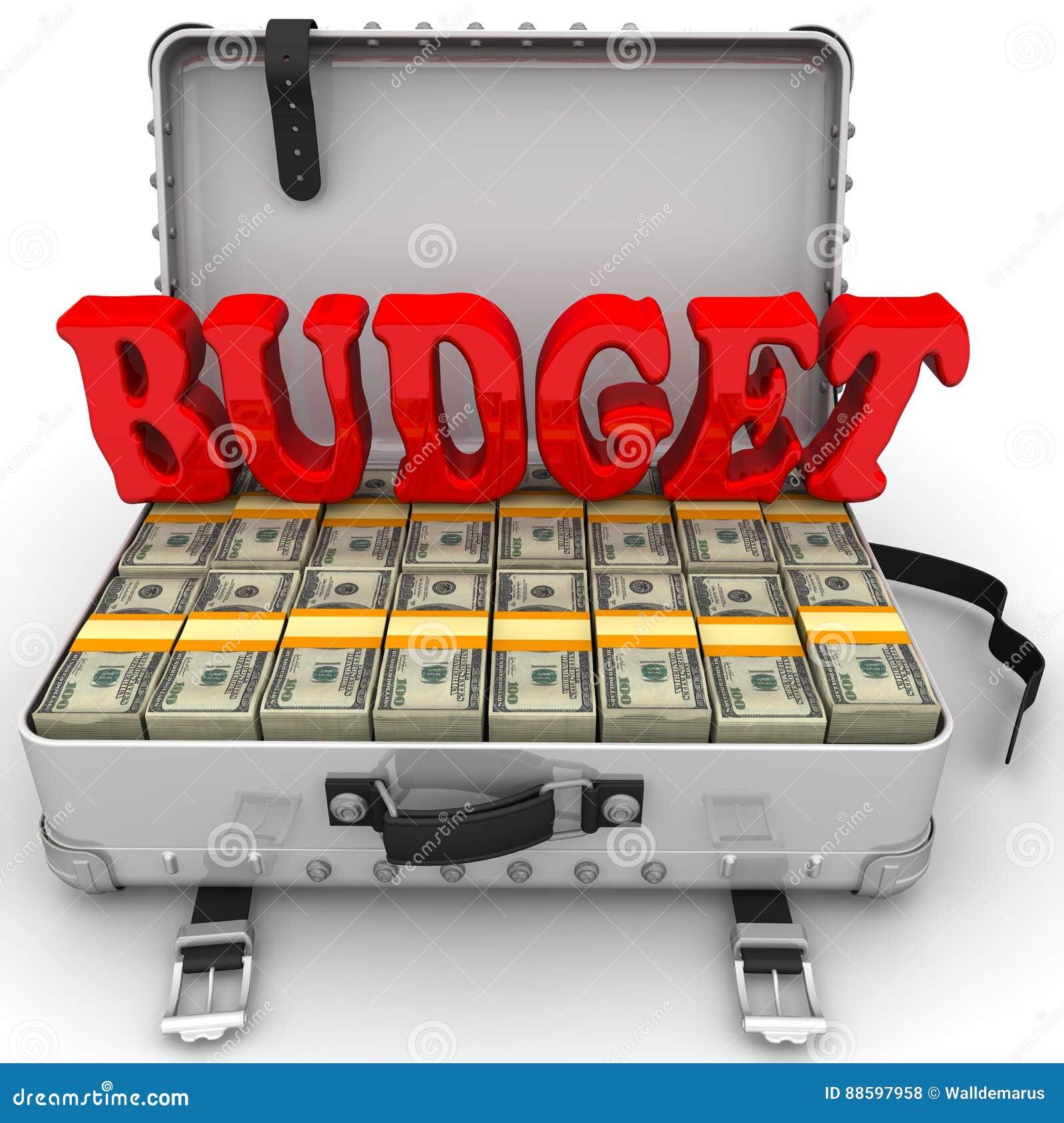 Budgeter full pengarresväska
