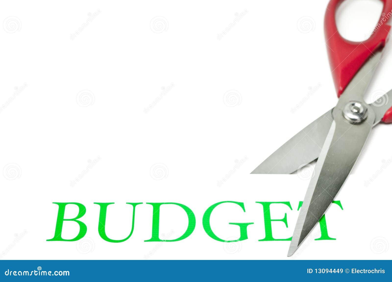 Budgetnedskärningar