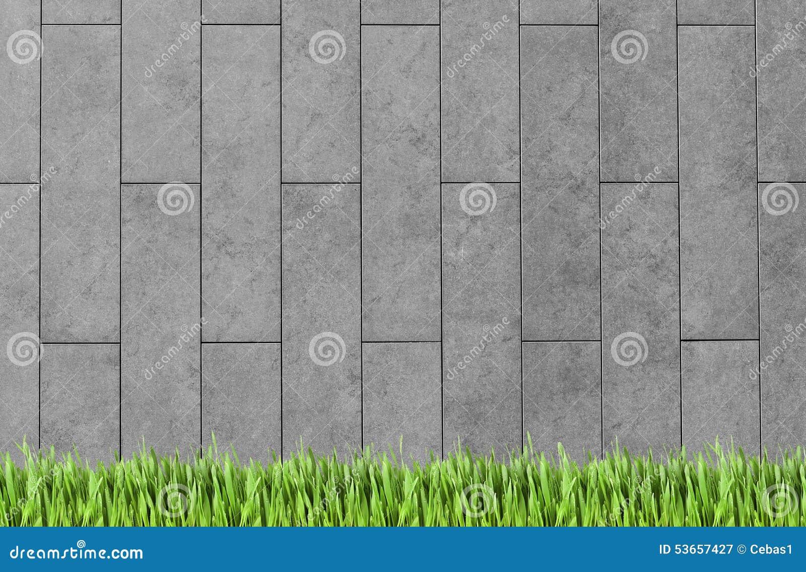 Budować ściennej i zielonej trawy tło