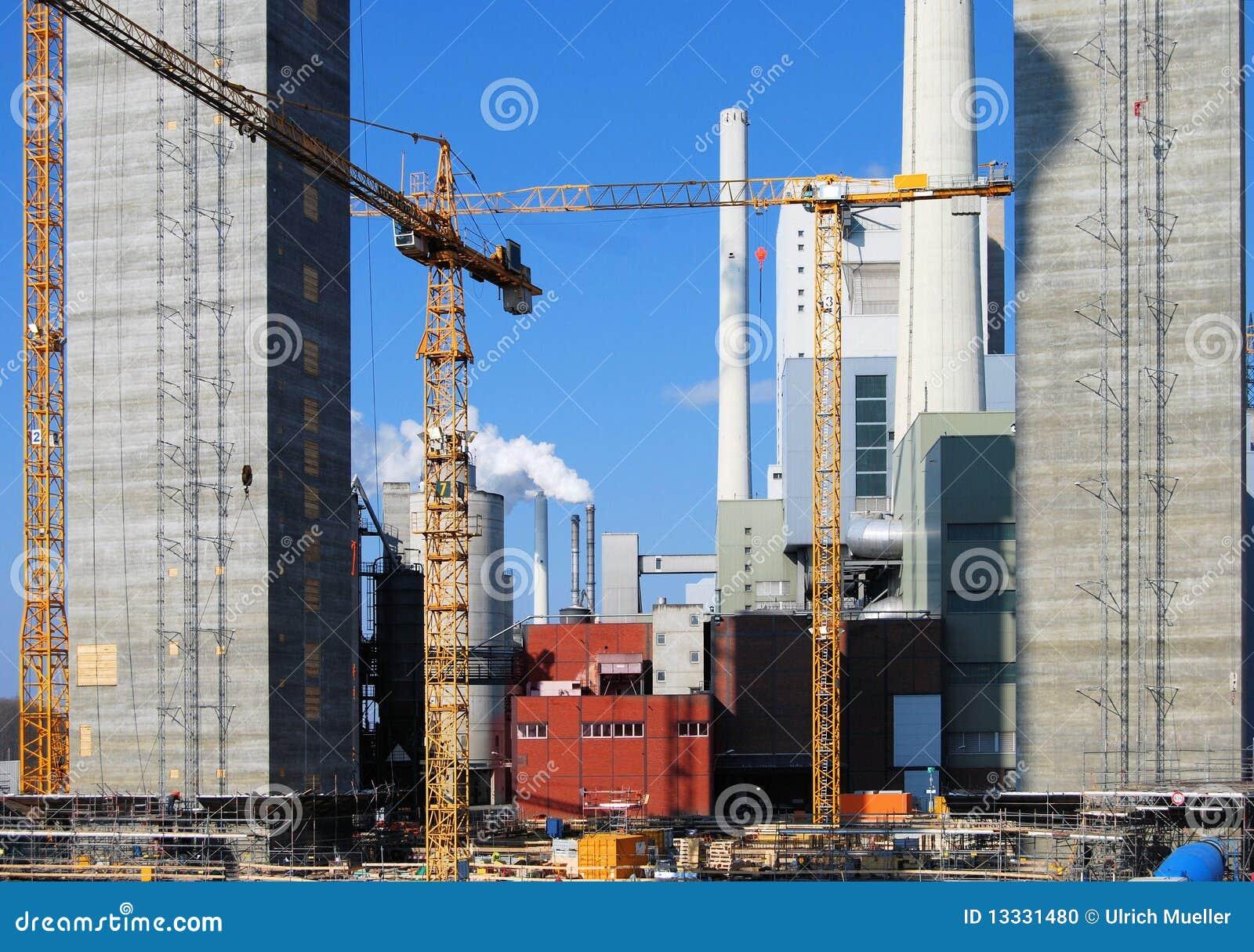 Budowy rośliny władzy miejsce