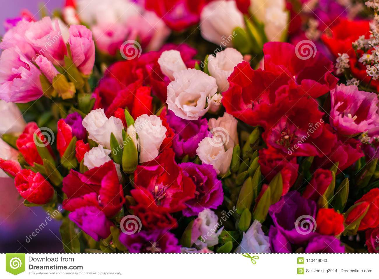 Buds Of Beautiful Multicolored Flowers. Stock Photo - Image of gift ...
