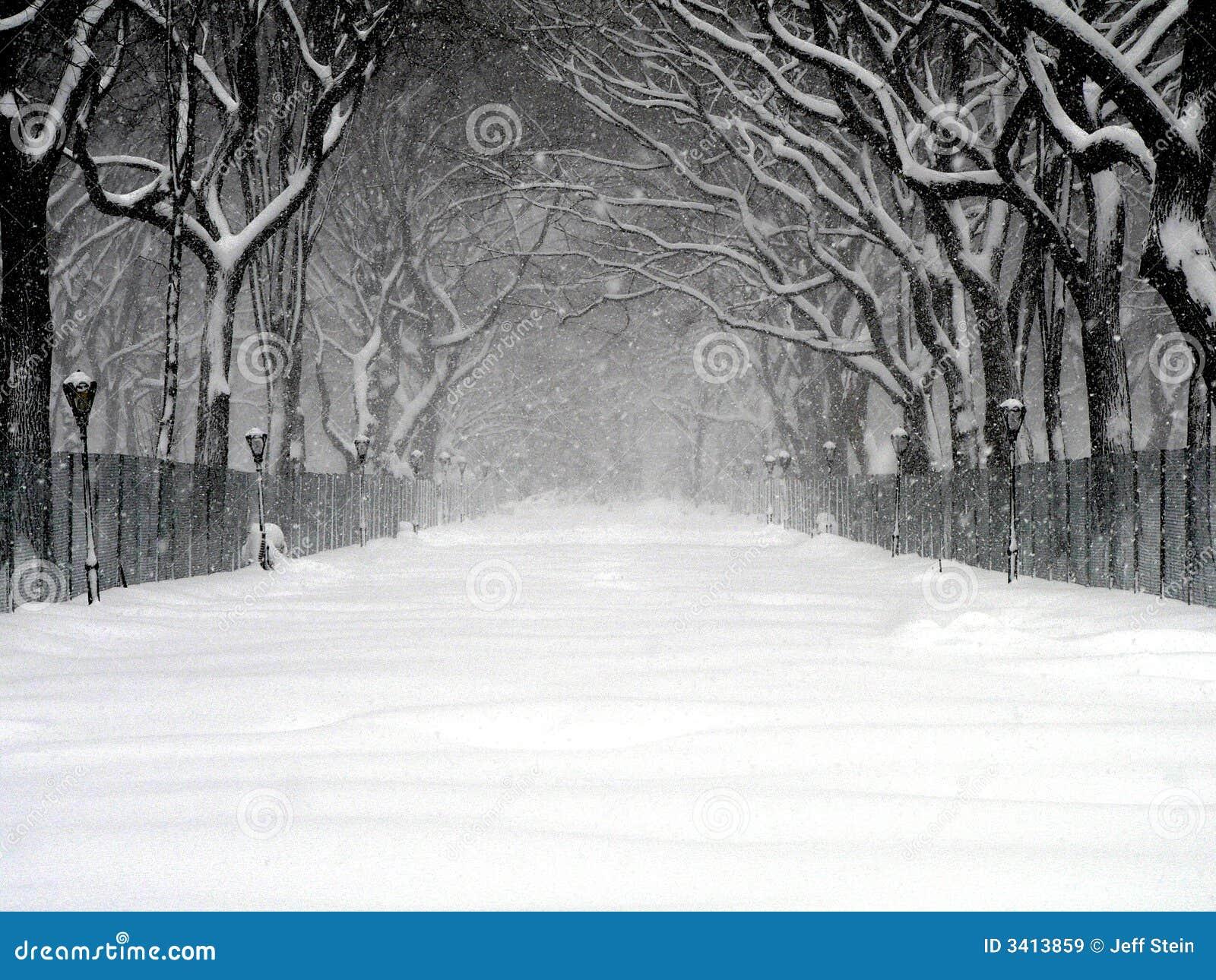 Bufera di neve 03 del Central Park