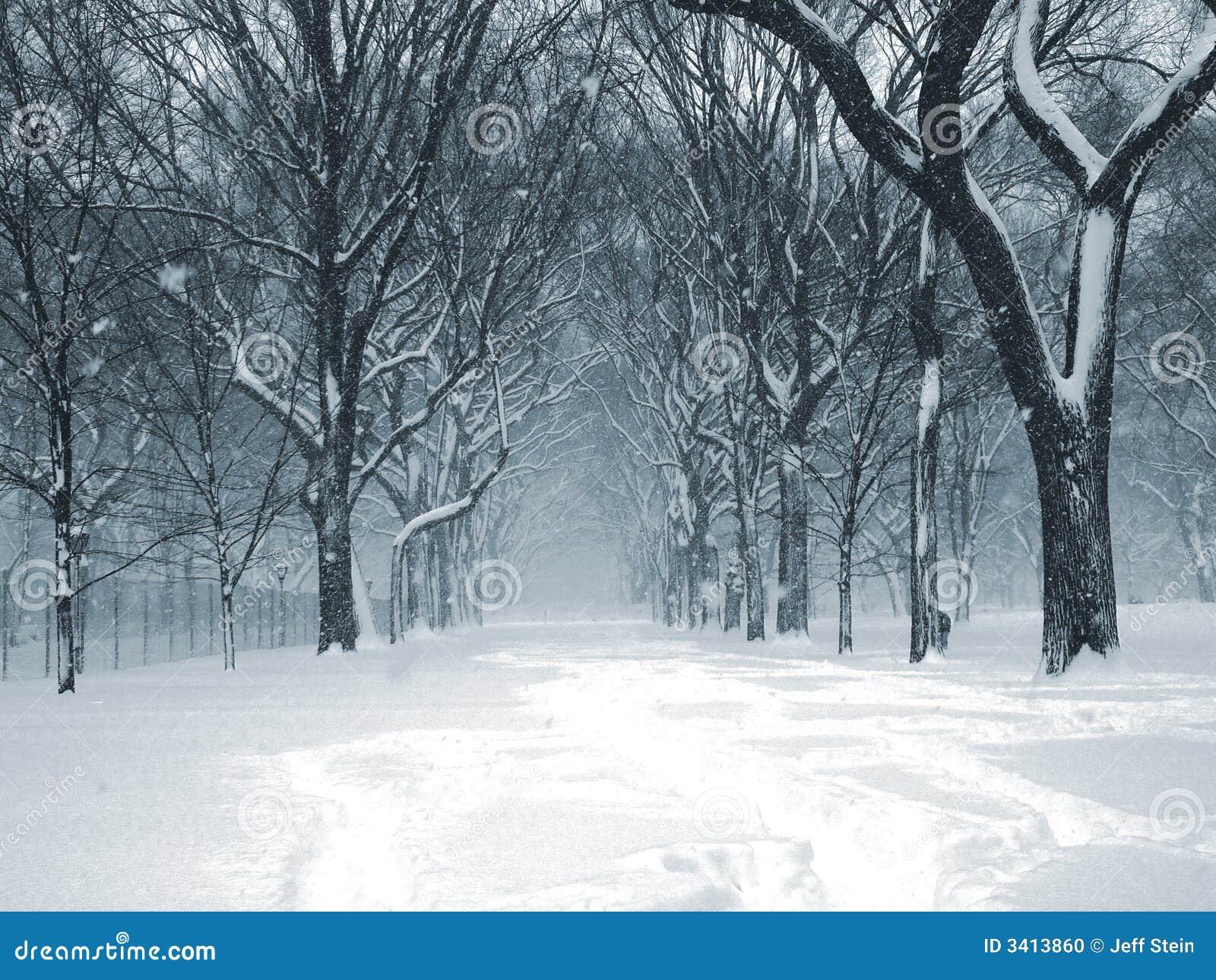 Bufera di neve 04 del Central Park