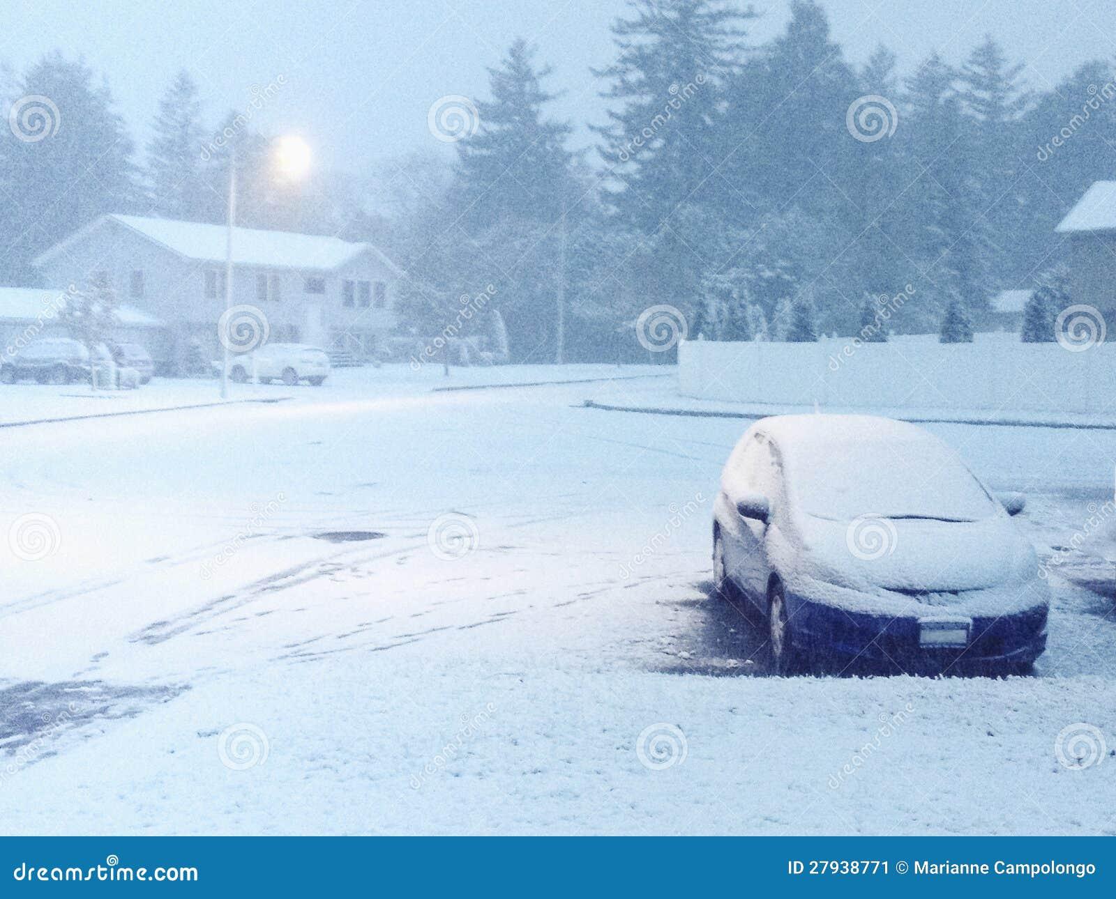 Bufera di neve di Snowy a penombra