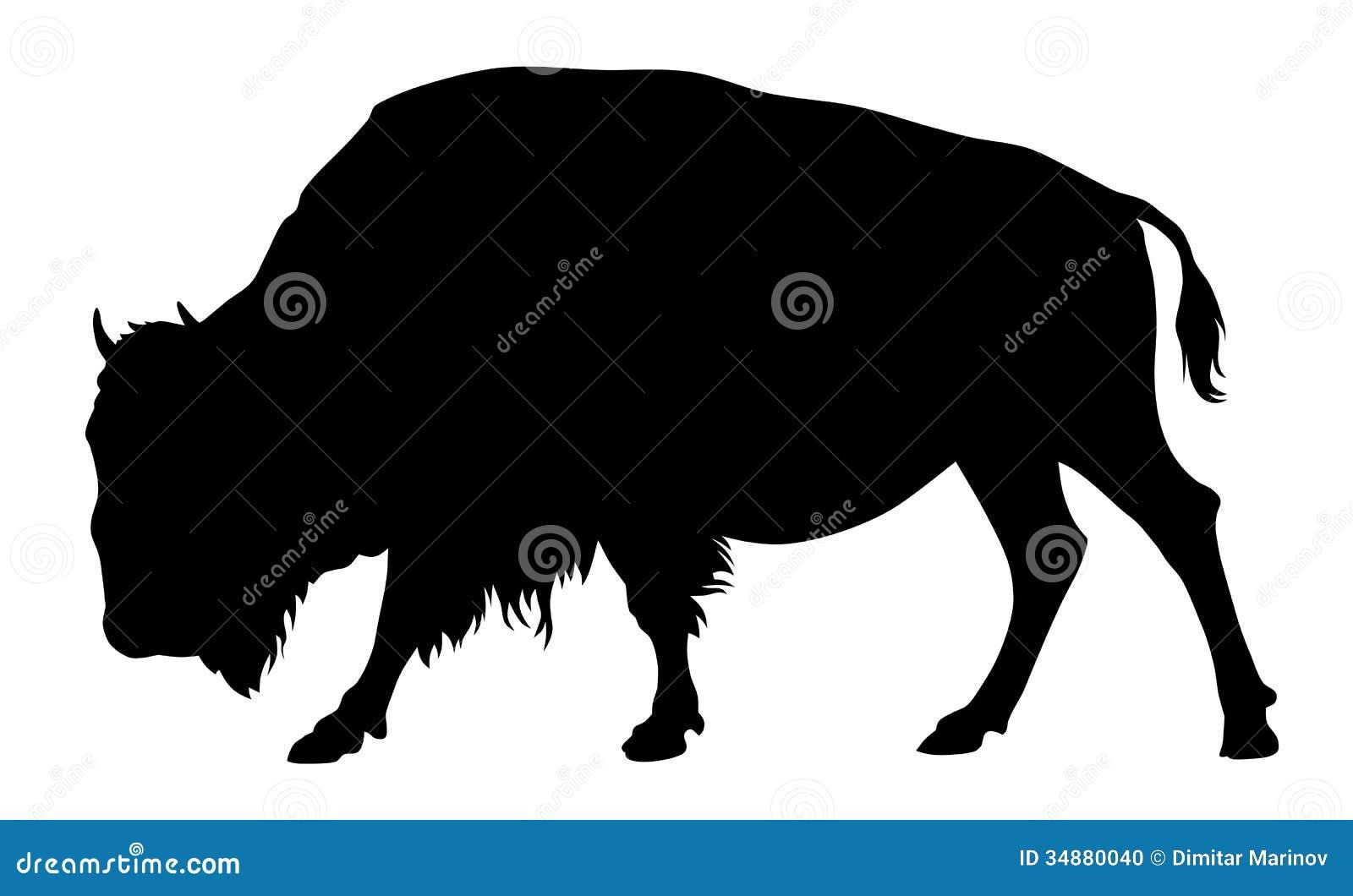 Buffalo stock vector. ...
