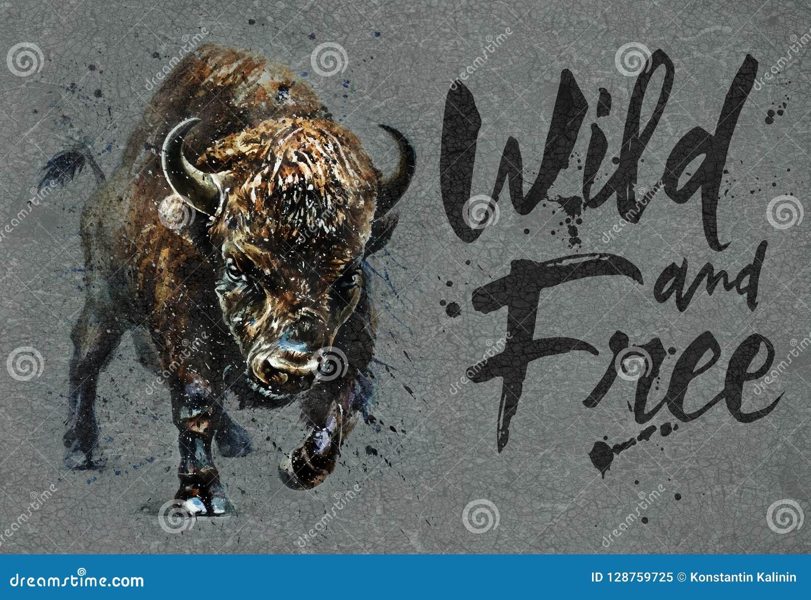 American Buffalo Watercolor Painting Buffalo Print Bison Print Bison Decor Bison