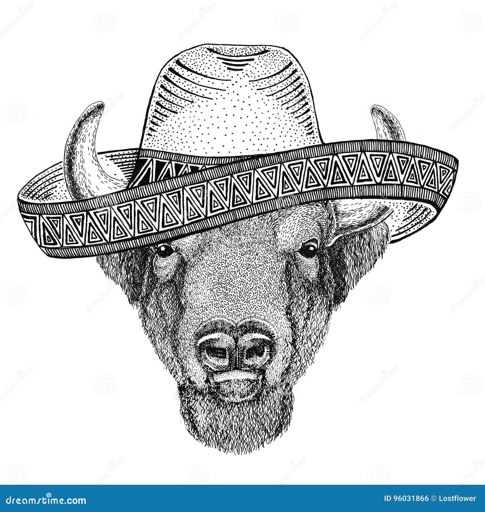 Buffel bison, oxe, löst djur för tjur som bär västra för mexicansk illustration för parti för sombreroMexico Fiesta löst