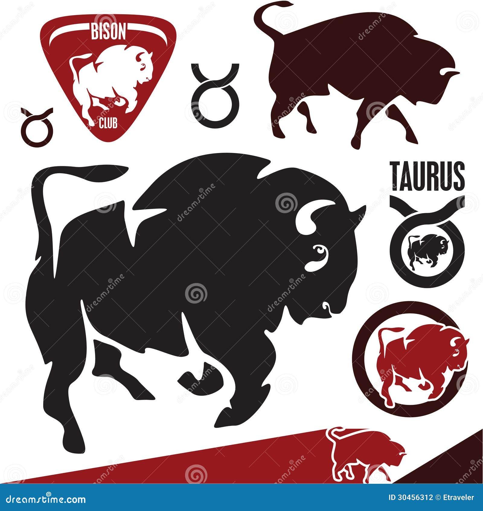 Buffels. Bizon. Stier.