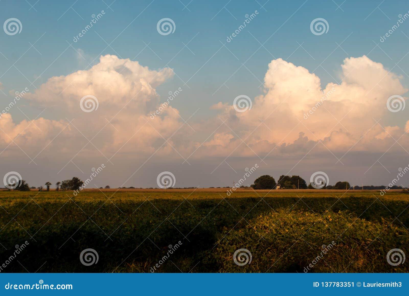 Bufiaste cumulus chmury na jaskrawym pełnia lata ranku nad Illinois ziemią uprawną,