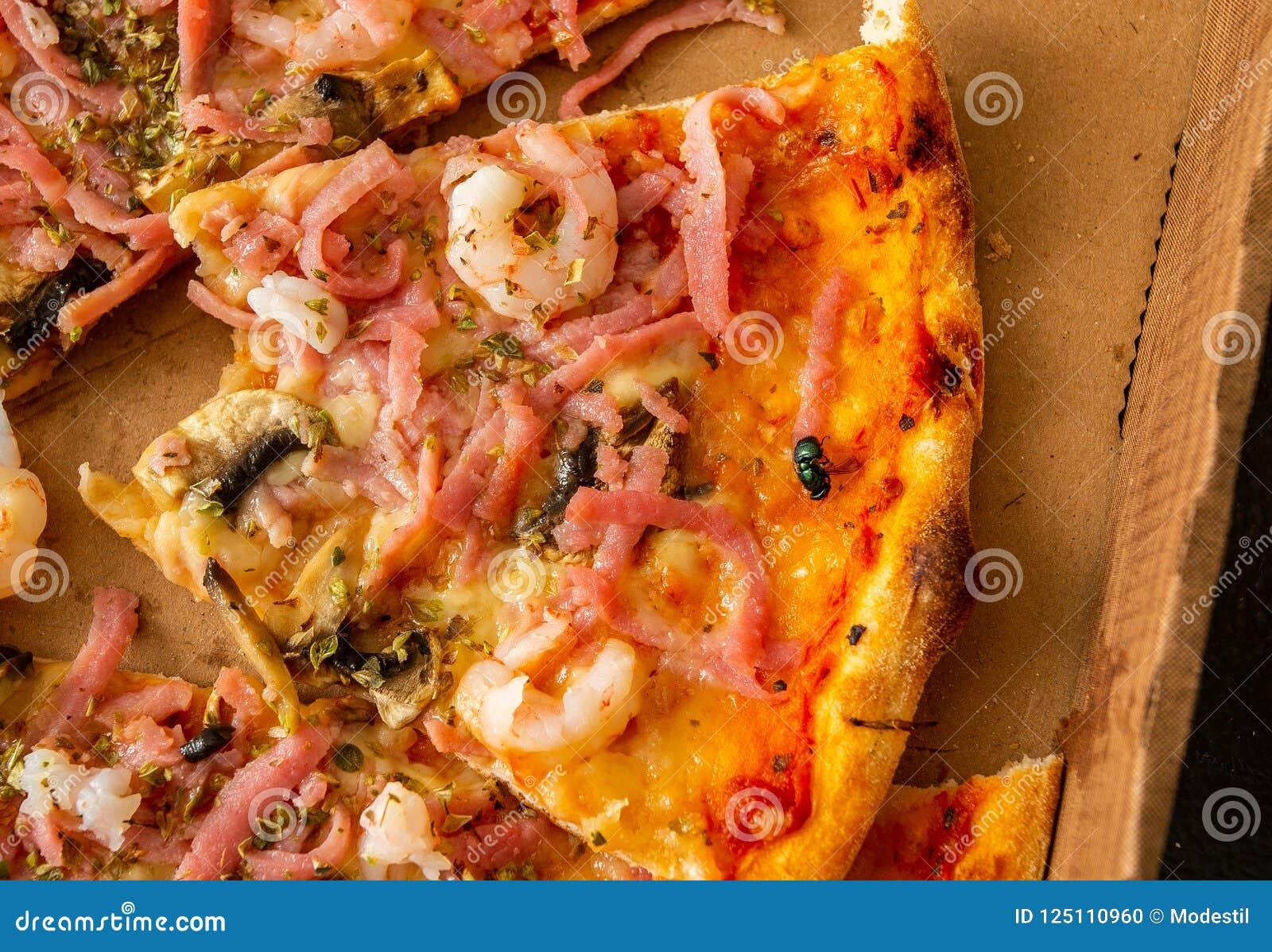 Bug on pizza slice