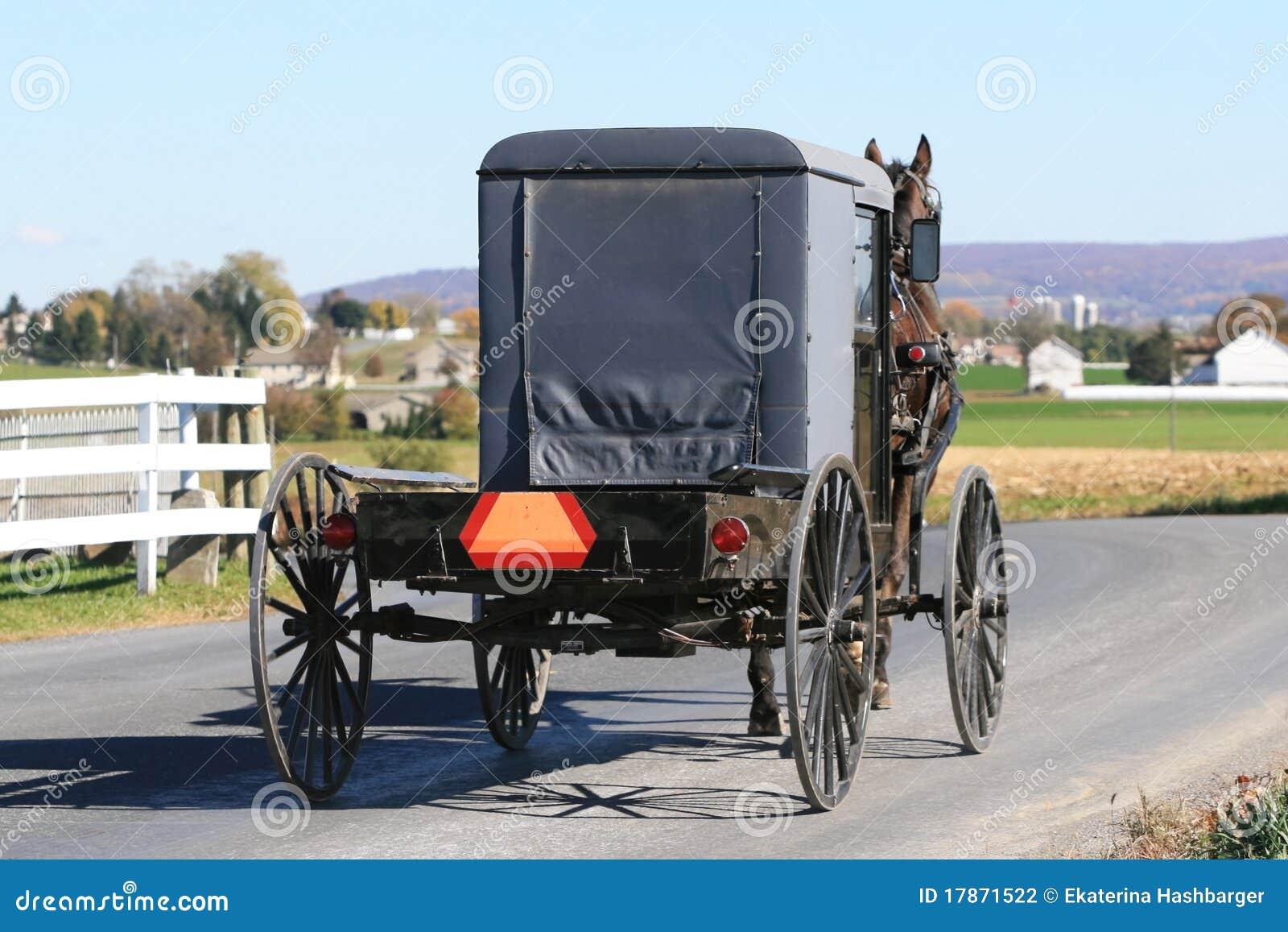 Buggy de Amish na estrada