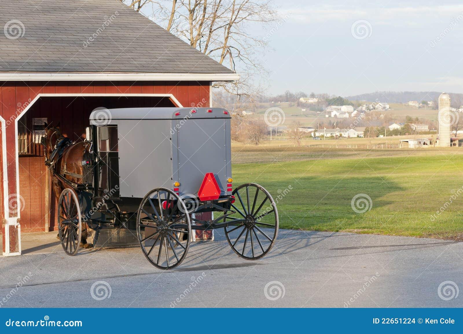 Buggy dei Amish e del cavallo