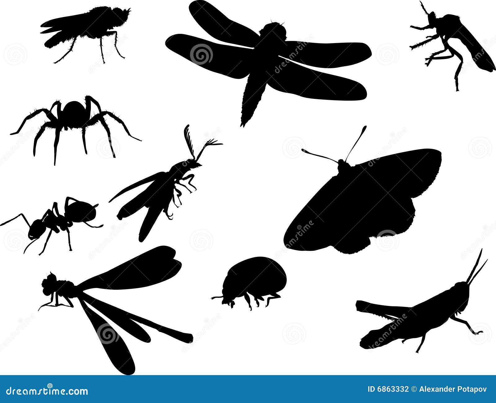 Bugs насекомое другие силуэты