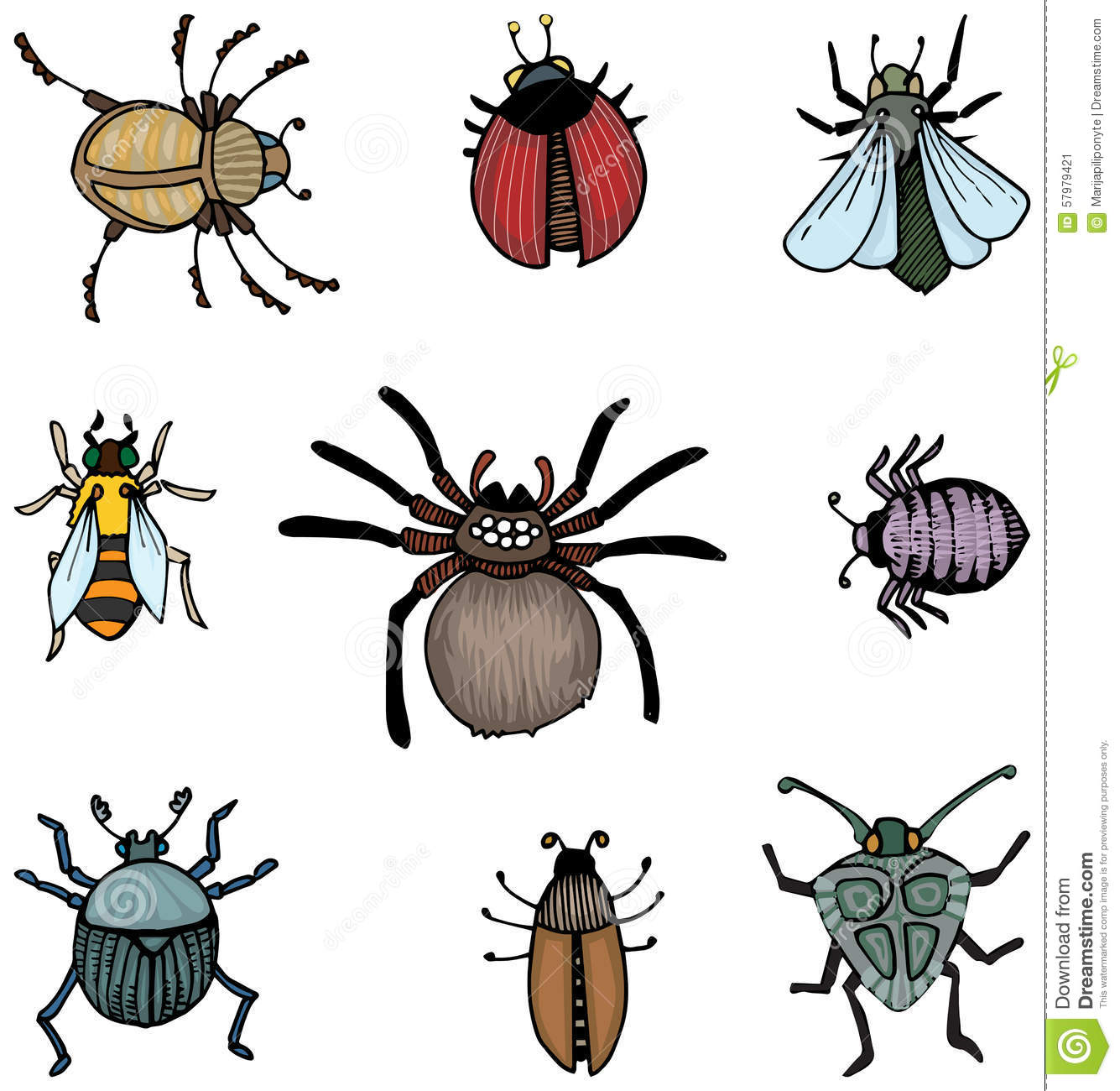 Bugs And Insects Stock Vector - Image: 57979421