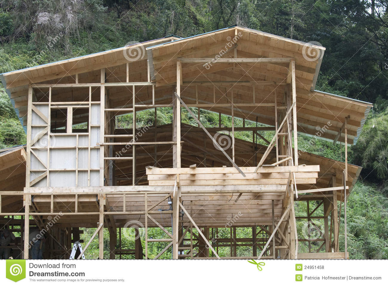 Building a house of wood stock photo image of bearing for Dream wooden house