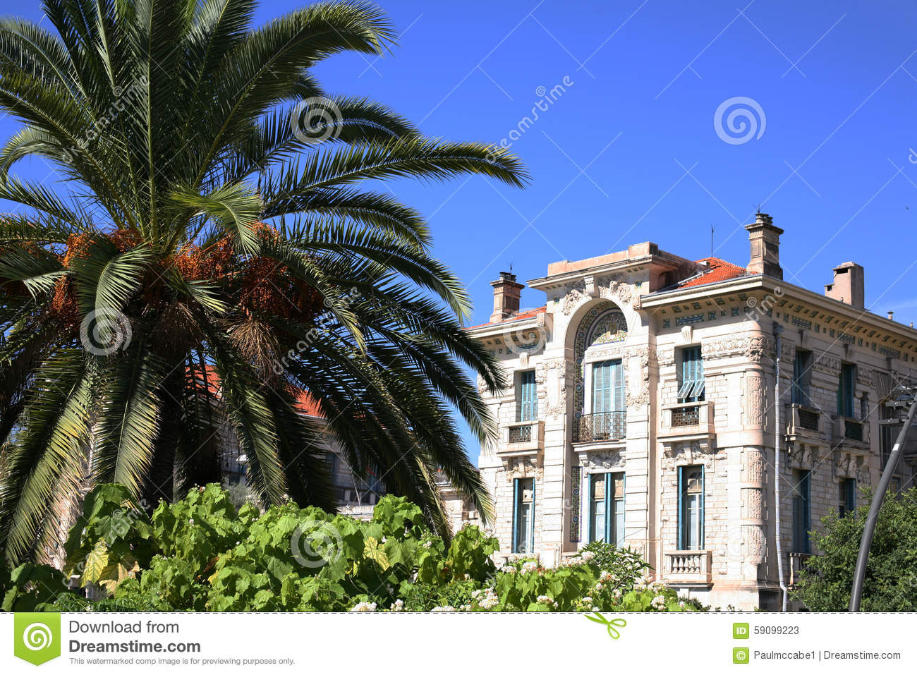 Building in nice france behind palm tree stock photo for Nice building images