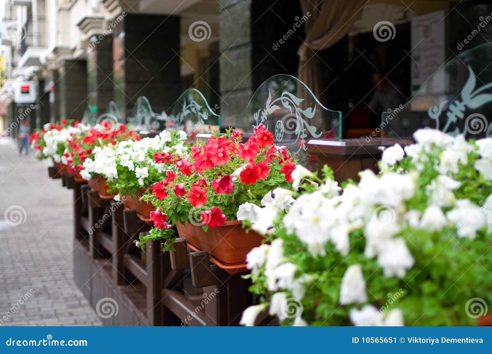 Buiten terras van restaurant stock afbeelding afbeelding 10565651 for Buiten terras