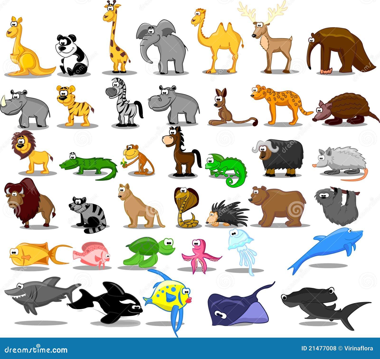 Buitengewoon brede reeks dieren met inbegrip van leeuw, kangaro