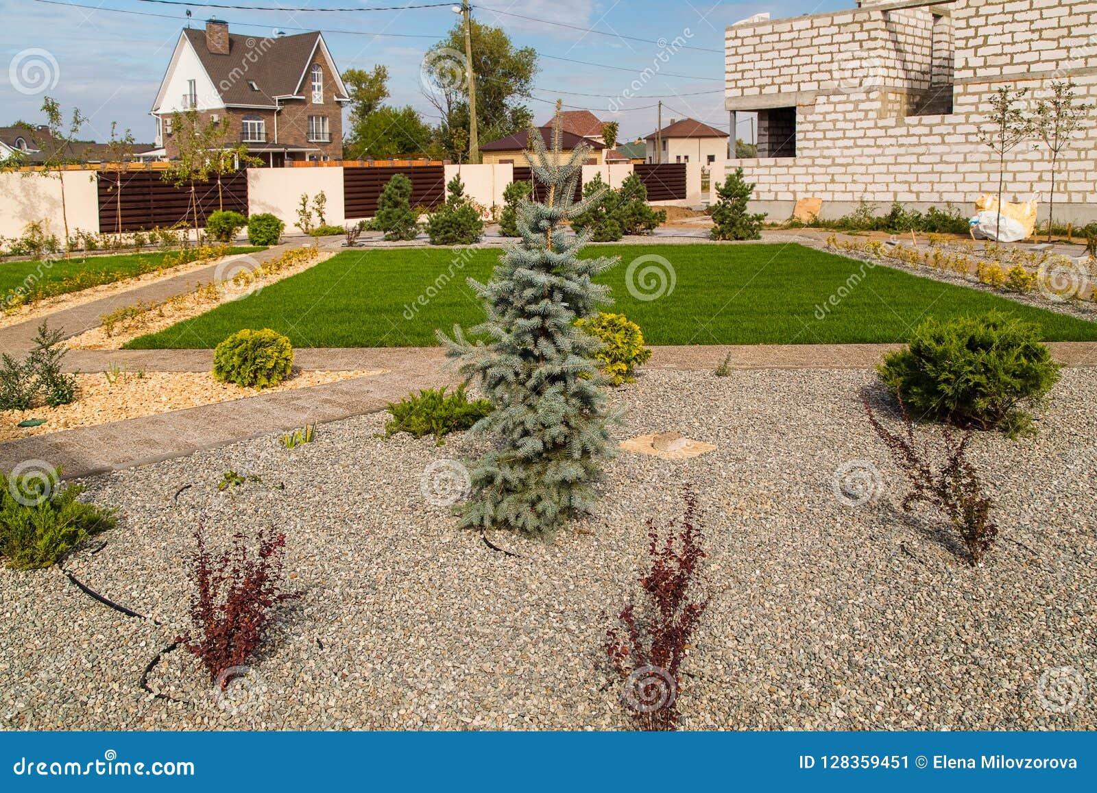 Buitenhuis en groen gazon Het ontwerp van het landschap