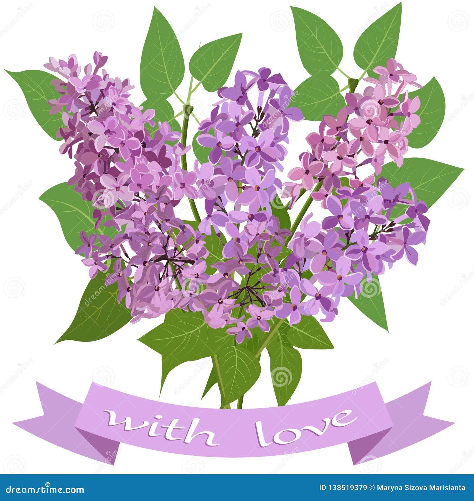 Bukett av lilan och bandet med inskriften med förälskelse