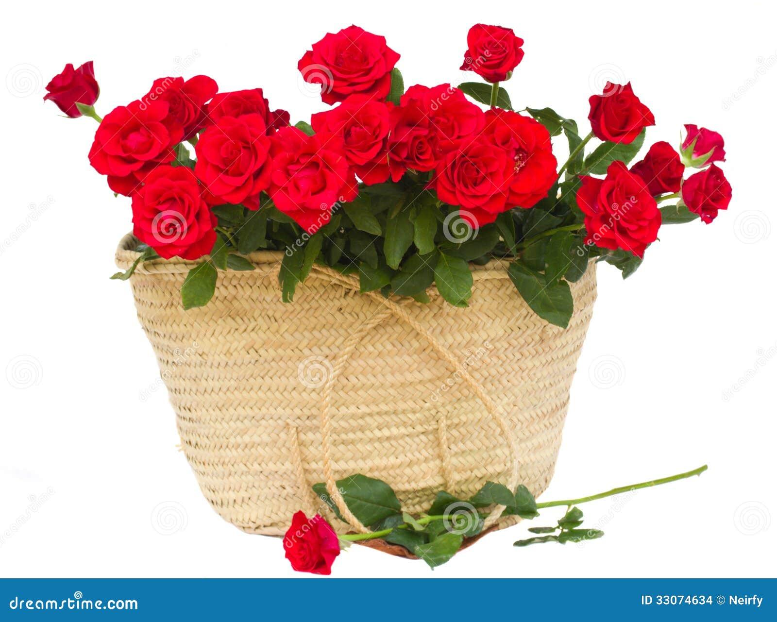 Bukett av scharlakansröda rosor i korg