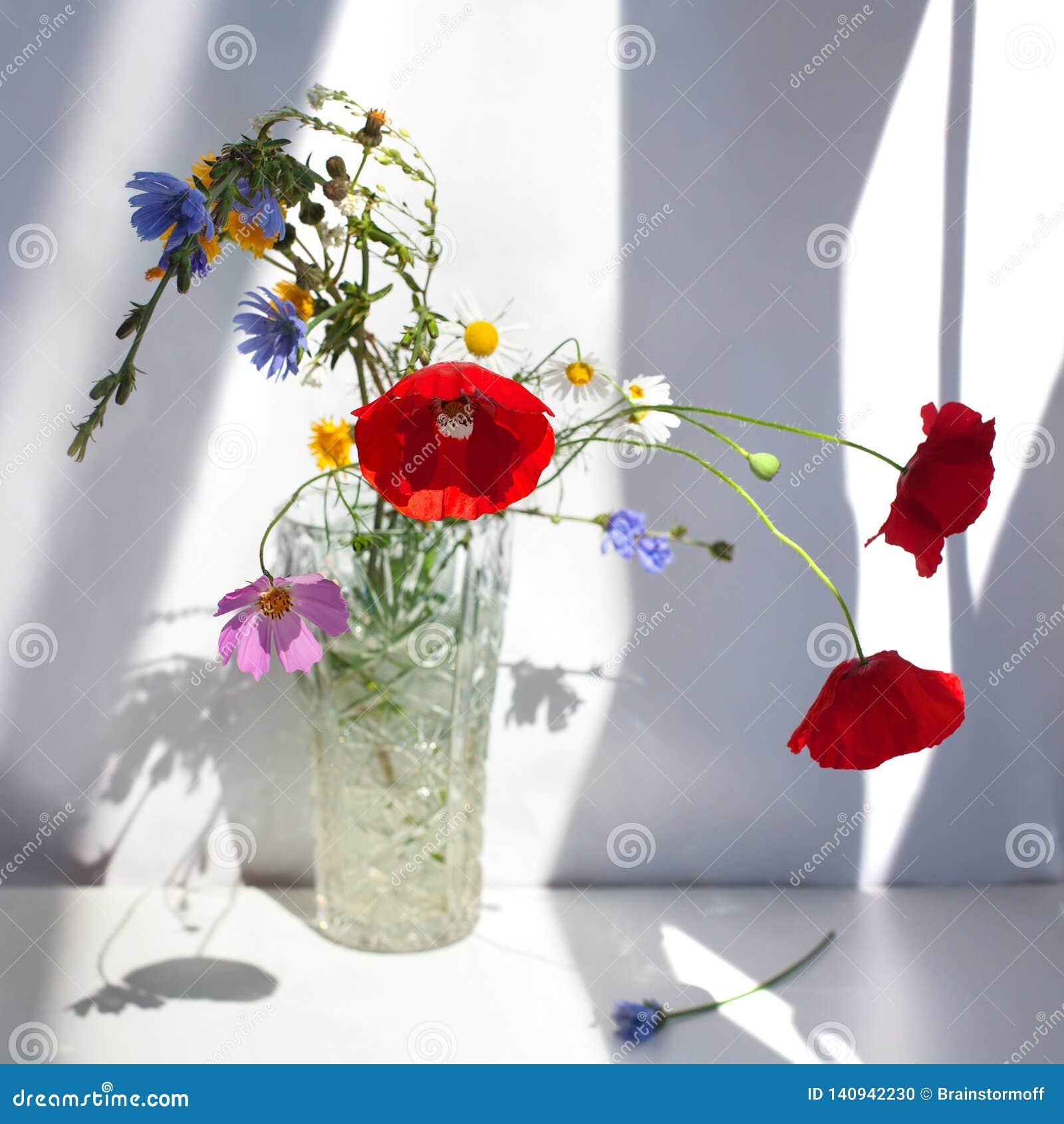 Bukett av tre röda vallmoblommor och olika vildblommor i kristallvas med vatten på den vita tabellen med kontrastsolljus och