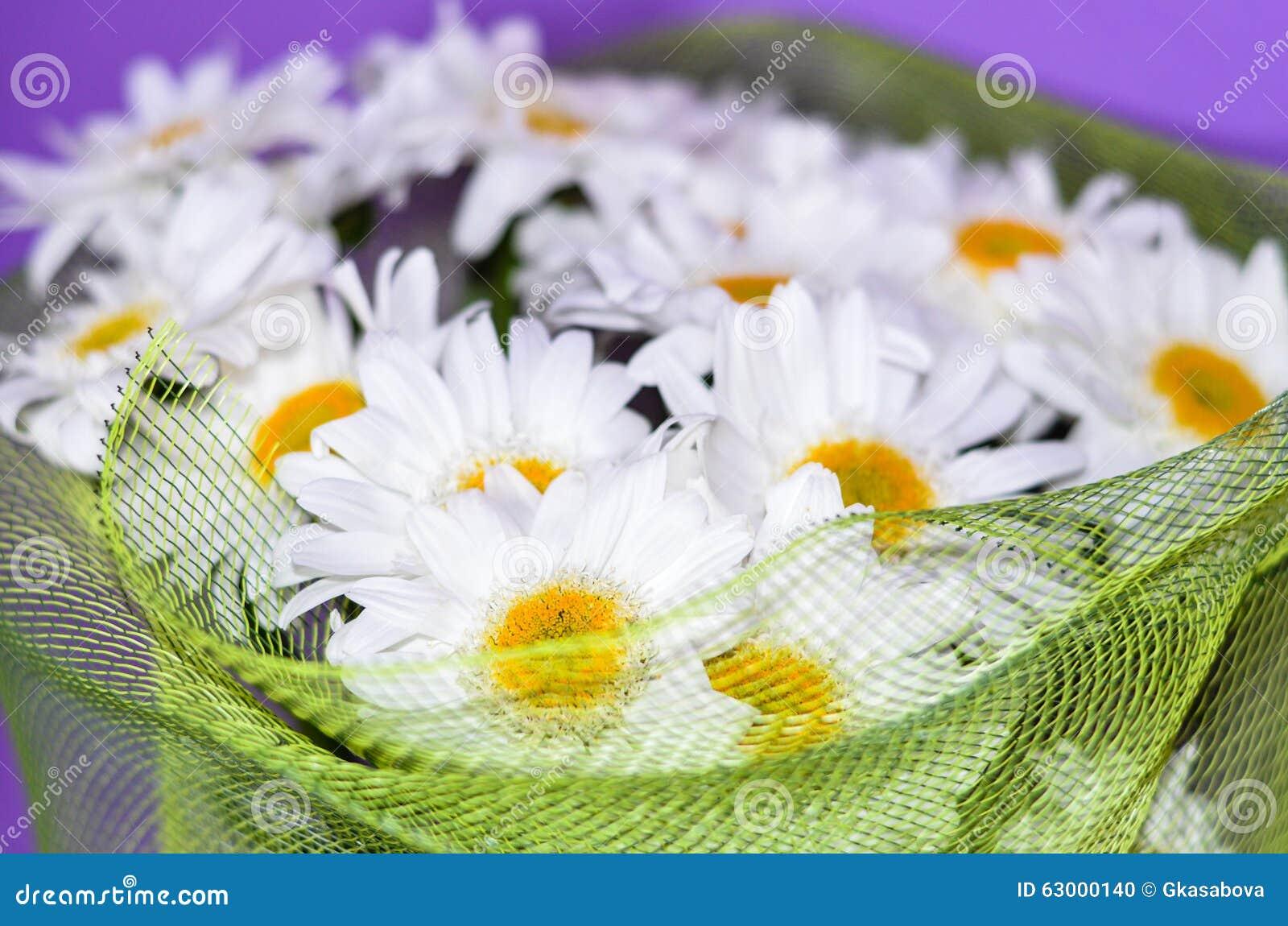 Buketten av den vita tusenskönan blommar på en orange bakgrund