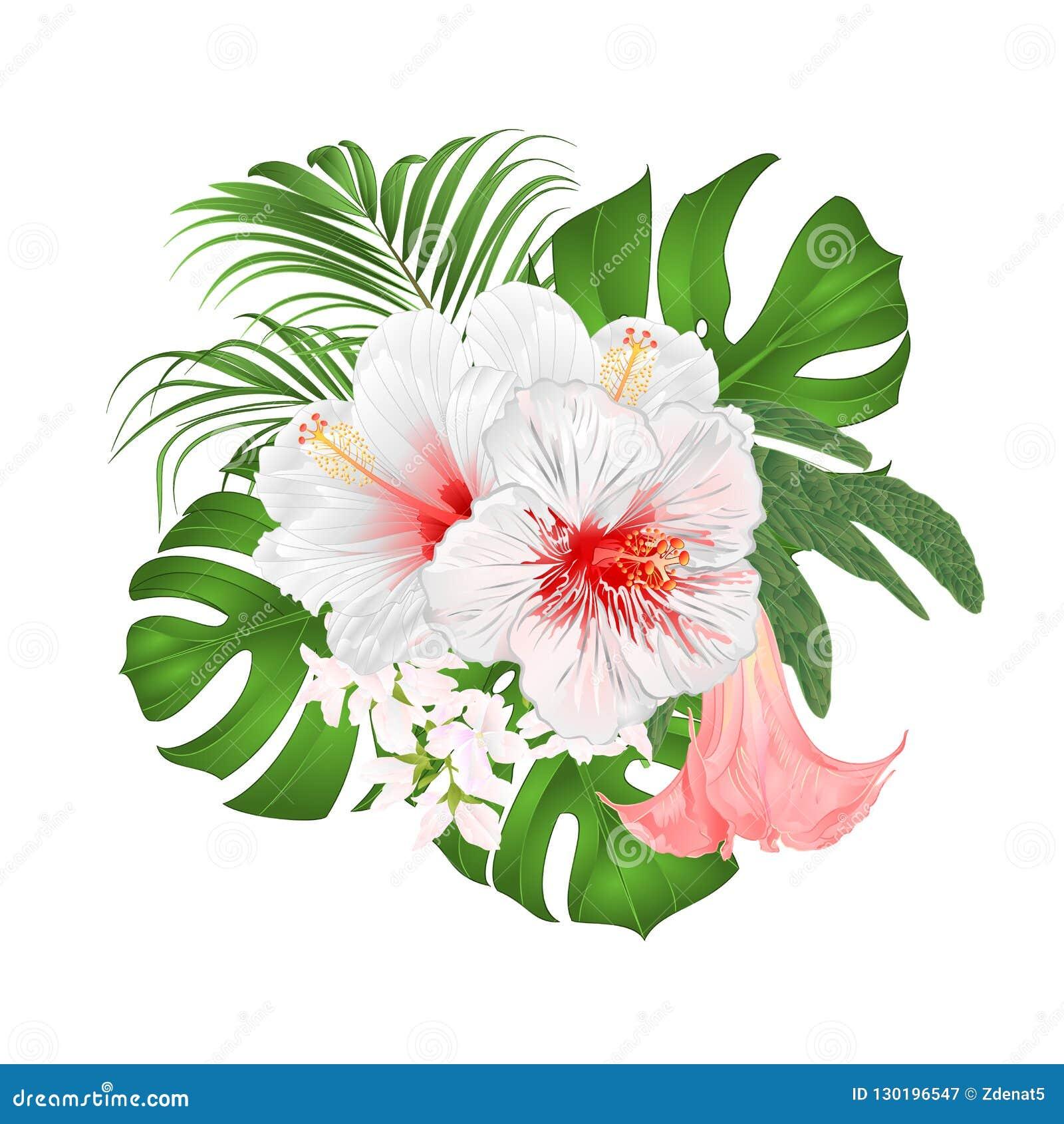 Buketten med blom- ordning för tropiska blommor, med den härliga vita hibiskusen, gömma i handflatan, philodendronen och Brugmans