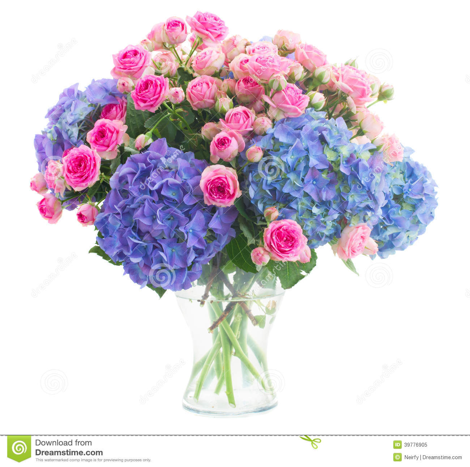 Bukiet świeże różowe róże i błękitni hortensia kwiaty