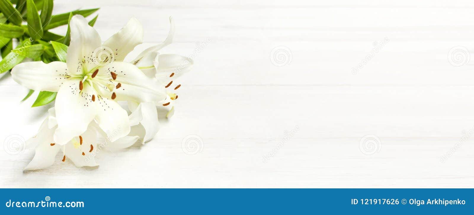 Bukiet białe leluje na białego drewnianego tła odgórnym widoku Kwitnie leluja pięknego bukieta białych kwiaty