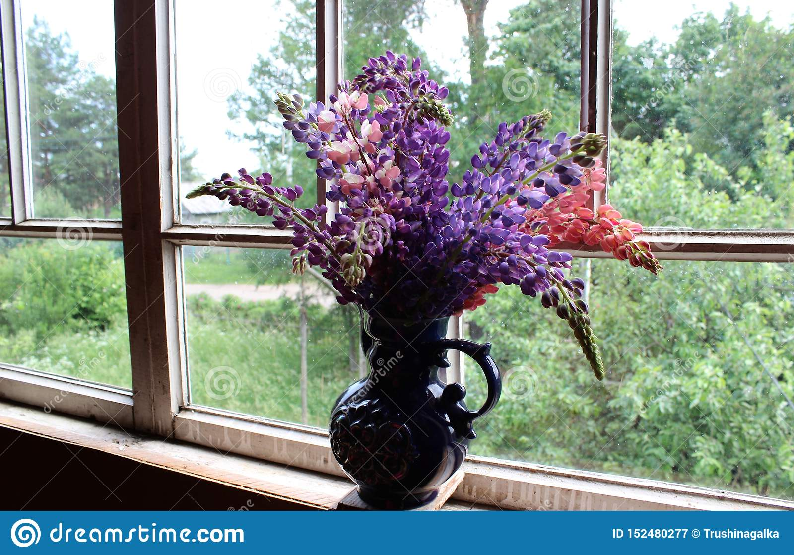 Bukiet bzu i menchii łubiny w błękitnej wazie przeciw okno w wieczór