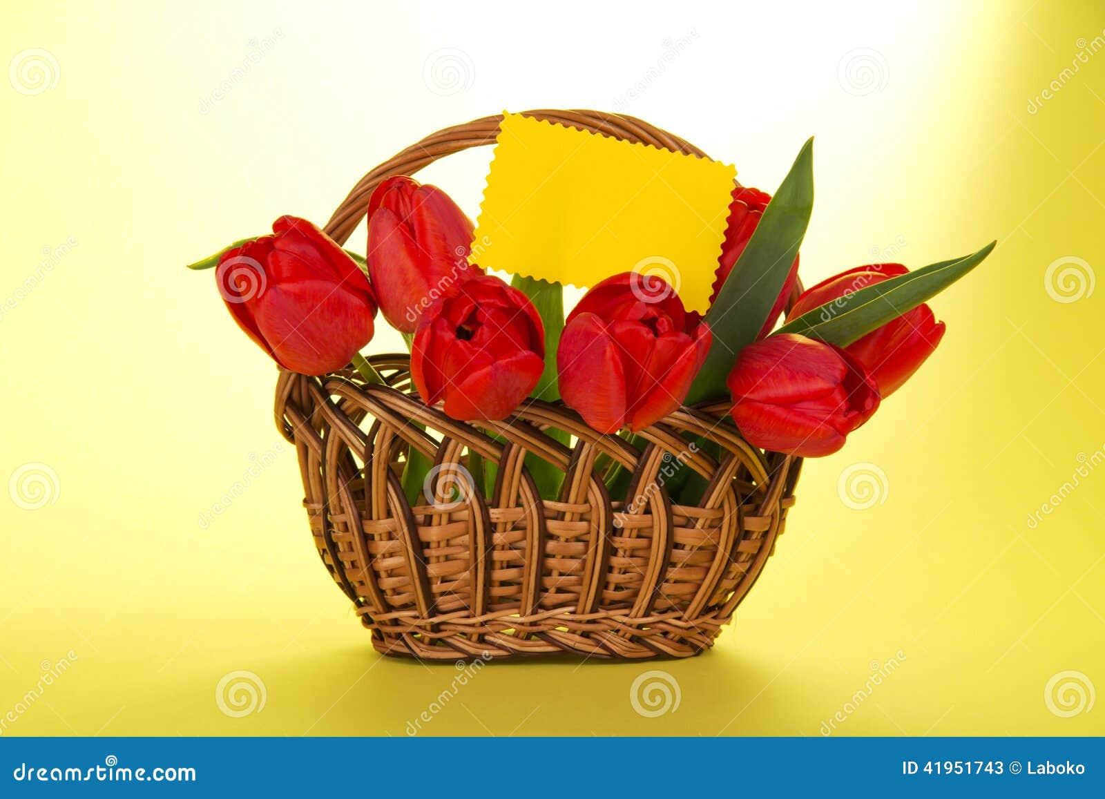 Bukiet czerwoni tulipany w koszu i pustej karcie