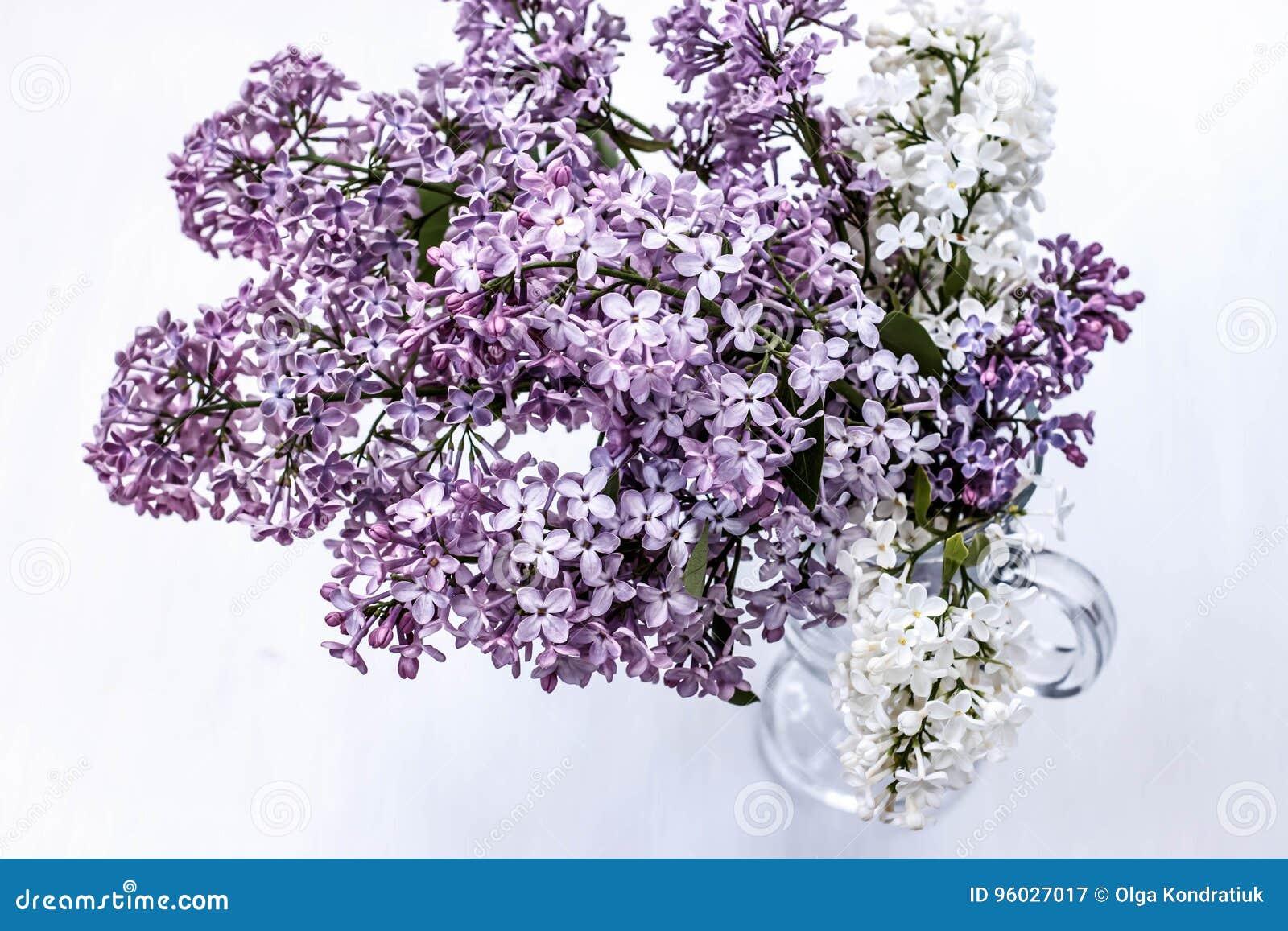 Bukiet purpurowy i biały bez w szklanym wineglass